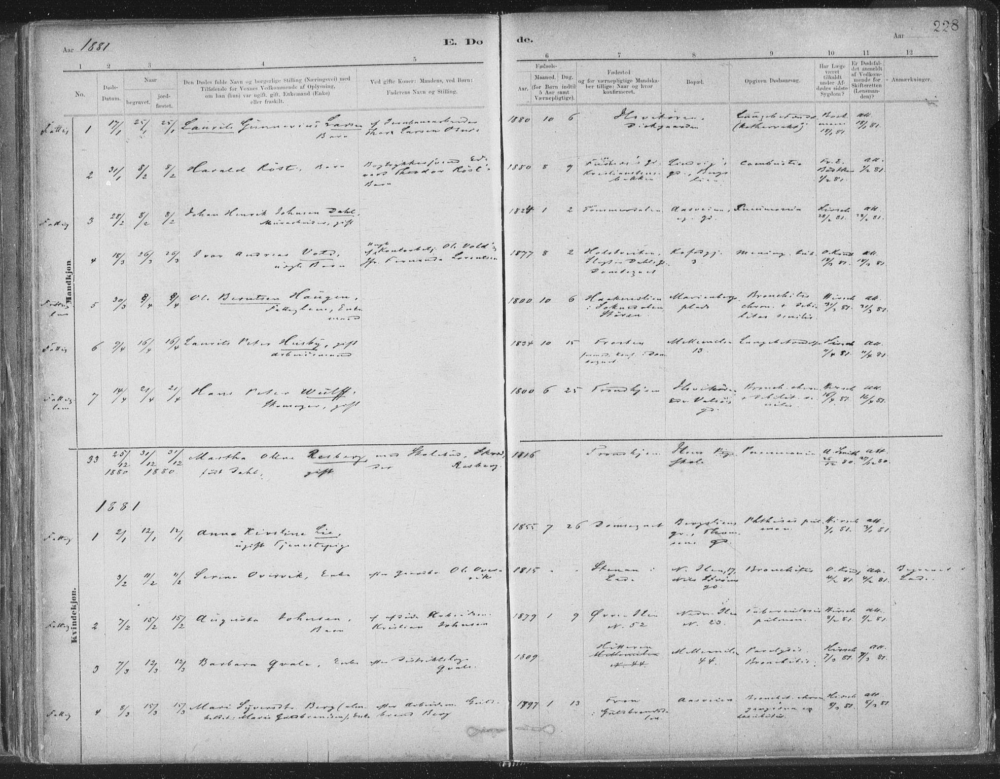 SAT, Ministerialprotokoller, klokkerbøker og fødselsregistre - Sør-Trøndelag, 603/L0162: Ministerialbok nr. 603A01, 1879-1895, s. 228