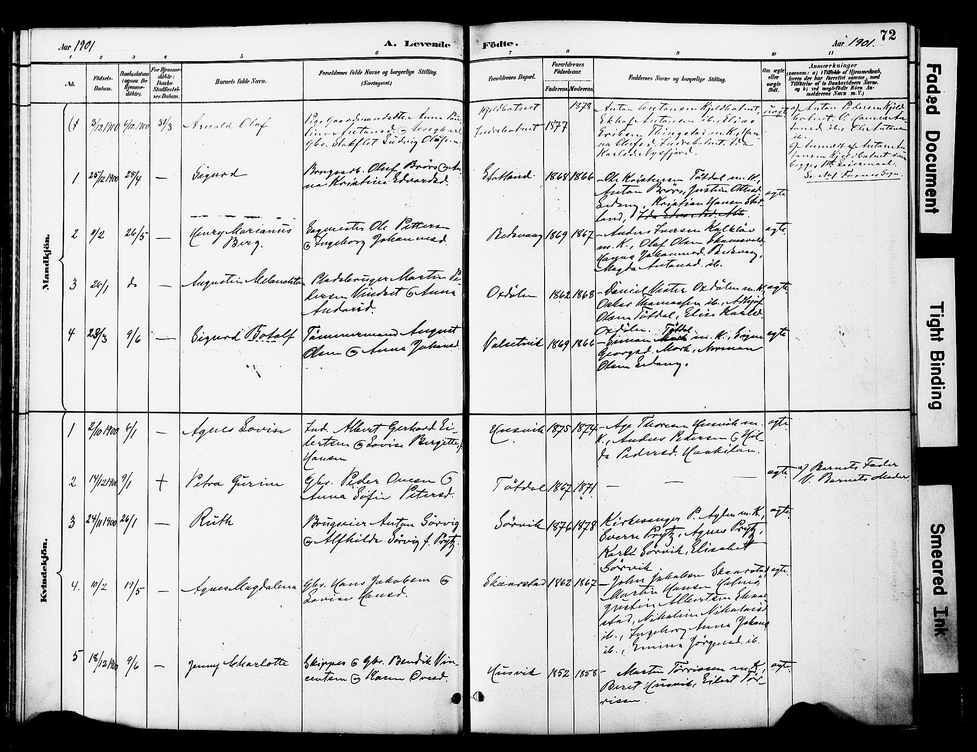 SAT, Ministerialprotokoller, klokkerbøker og fødselsregistre - Nord-Trøndelag, 774/L0628: Ministerialbok nr. 774A02, 1887-1903, s. 72