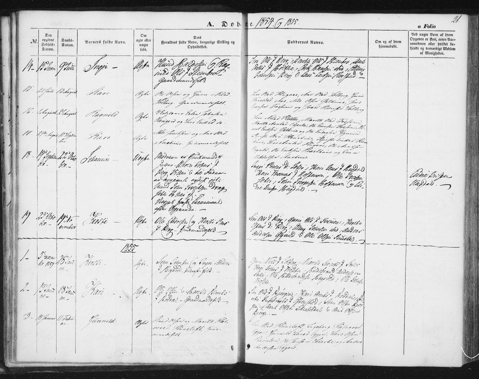 SAT, Ministerialprotokoller, klokkerbøker og fødselsregistre - Sør-Trøndelag, 689/L1038: Ministerialbok nr. 689A03, 1848-1872, s. 21