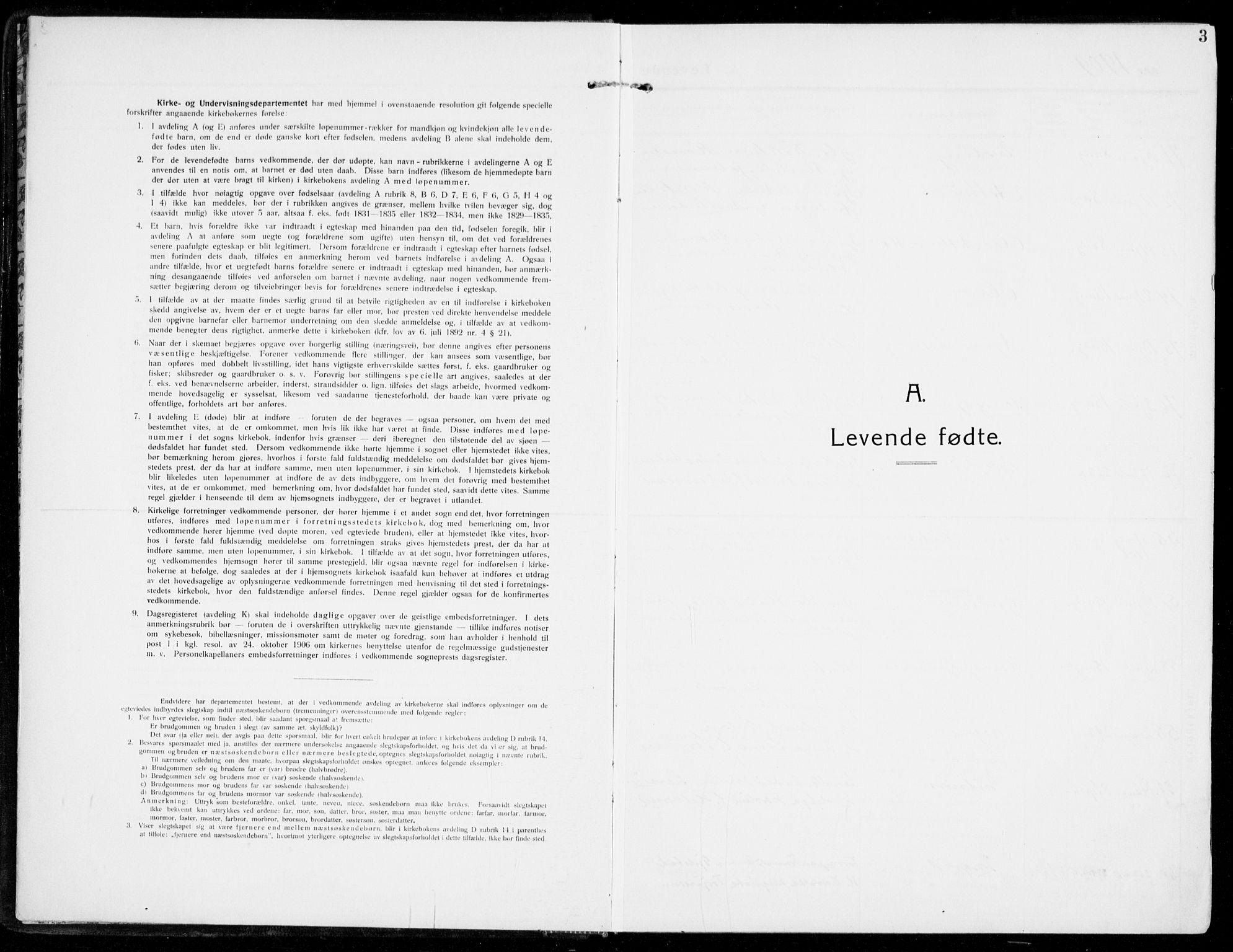 SAKO, Sandar kirkebøker, F/Fa/L0016: Ministerialbok nr. 16, 1909-1919, s. 3