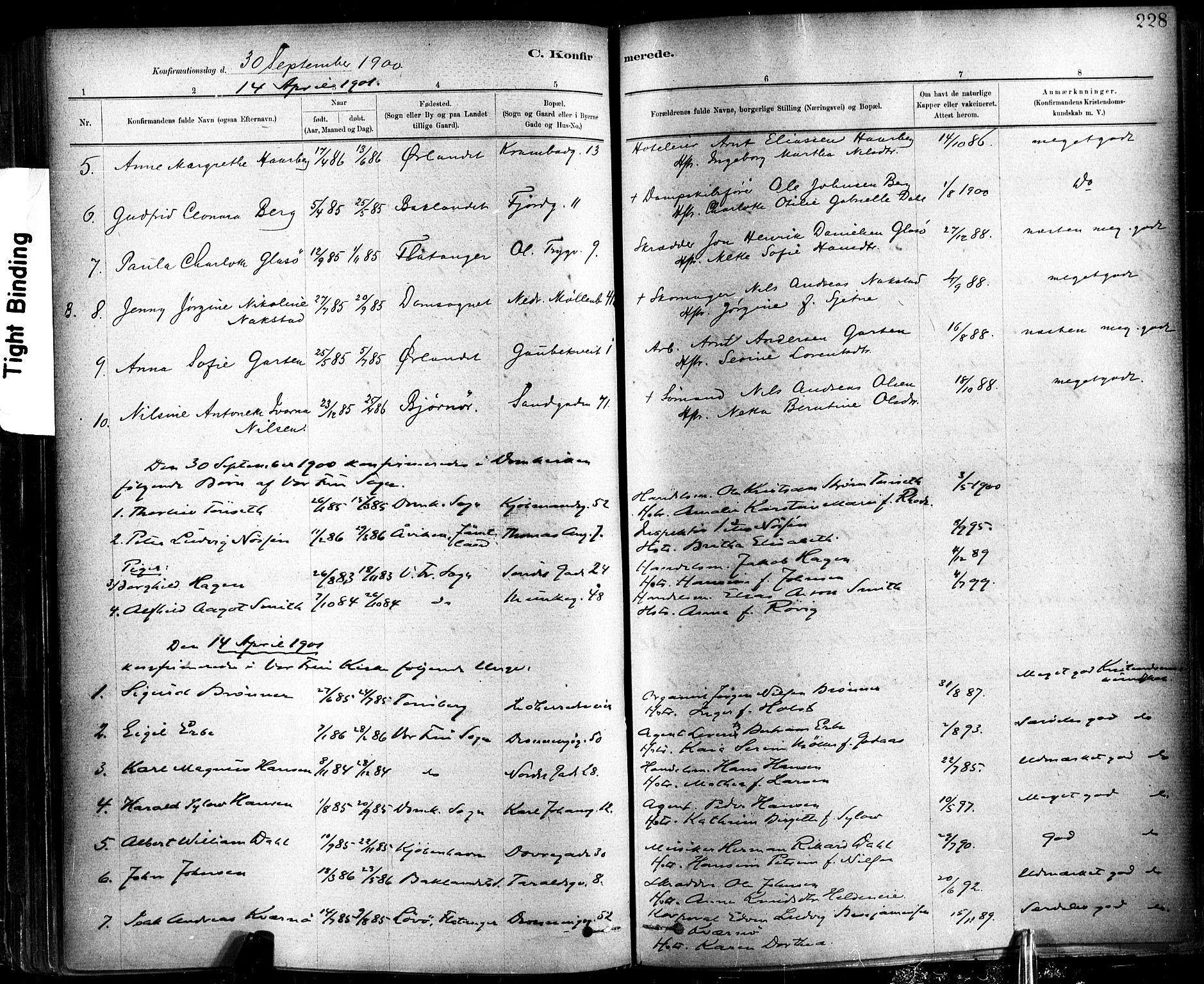 SAT, Ministerialprotokoller, klokkerbøker og fødselsregistre - Sør-Trøndelag, 602/L0119: Ministerialbok nr. 602A17, 1880-1901, s. 228