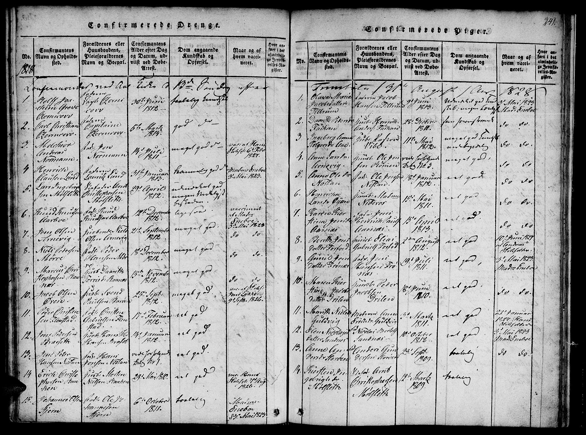 SAT, Ministerialprotokoller, klokkerbøker og fødselsregistre - Sør-Trøndelag, 655/L0675: Ministerialbok nr. 655A04, 1818-1830, s. 241