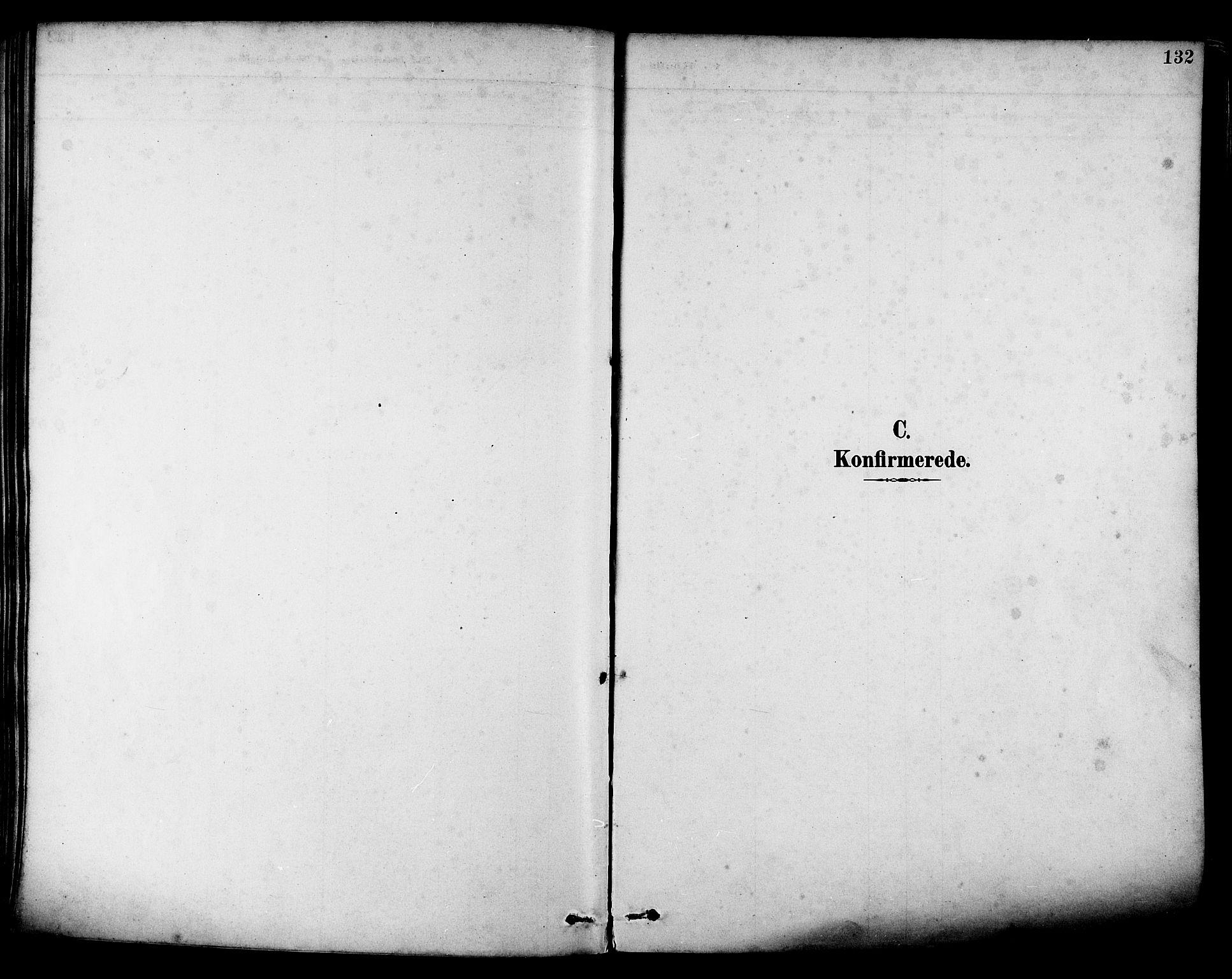 SAT, Ministerialprotokoller, klokkerbøker og fødselsregistre - Nordland, 880/L1133: Ministerialbok nr. 880A07, 1888-1898, s. 132