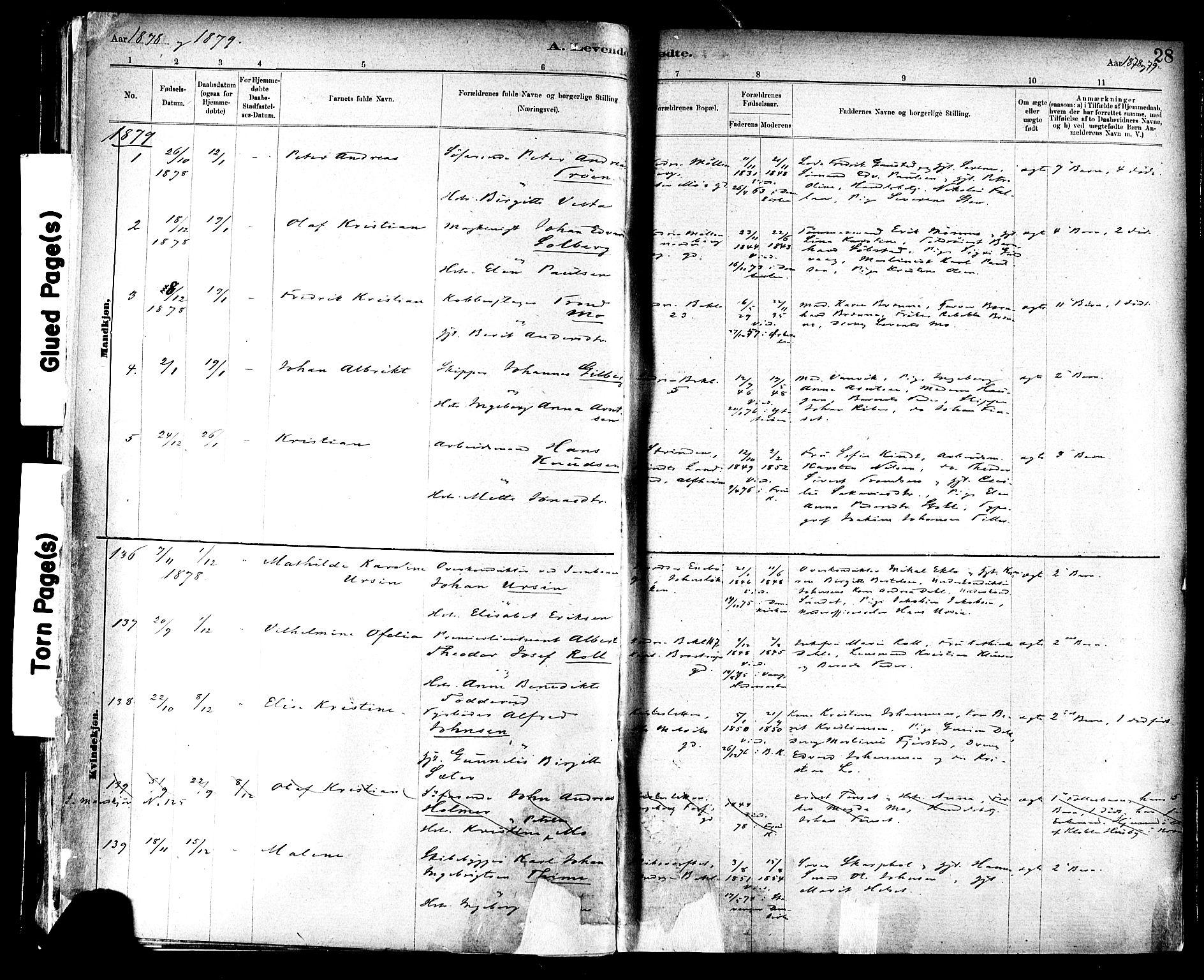 SAT, Ministerialprotokoller, klokkerbøker og fødselsregistre - Sør-Trøndelag, 604/L0188: Ministerialbok nr. 604A09, 1878-1892, s. 28