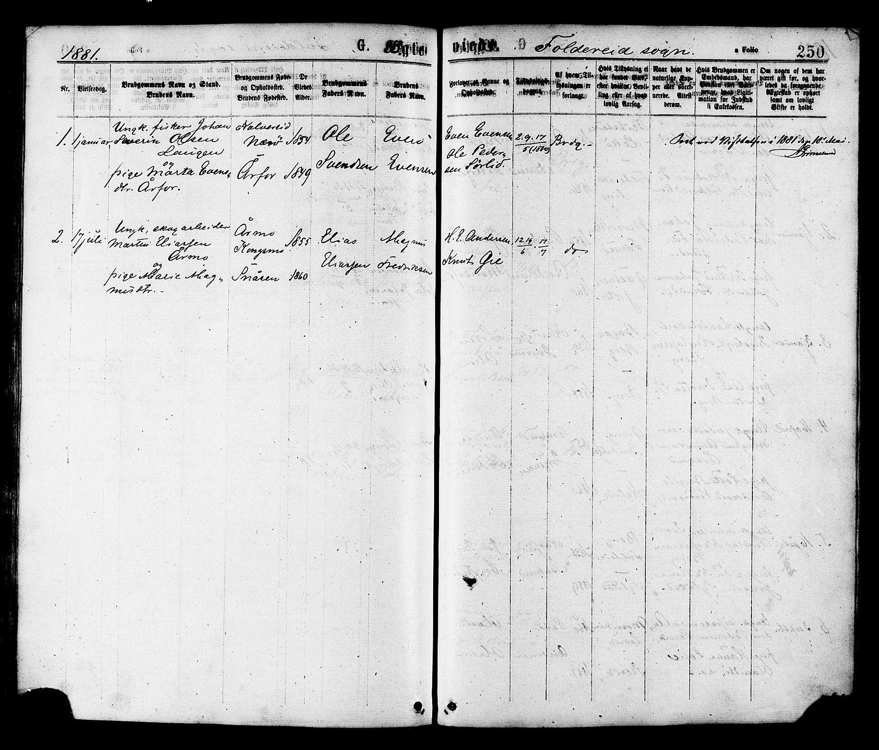 SAT, Ministerialprotokoller, klokkerbøker og fødselsregistre - Nord-Trøndelag, 780/L0642: Ministerialbok nr. 780A07 /2, 1878-1885, s. 250