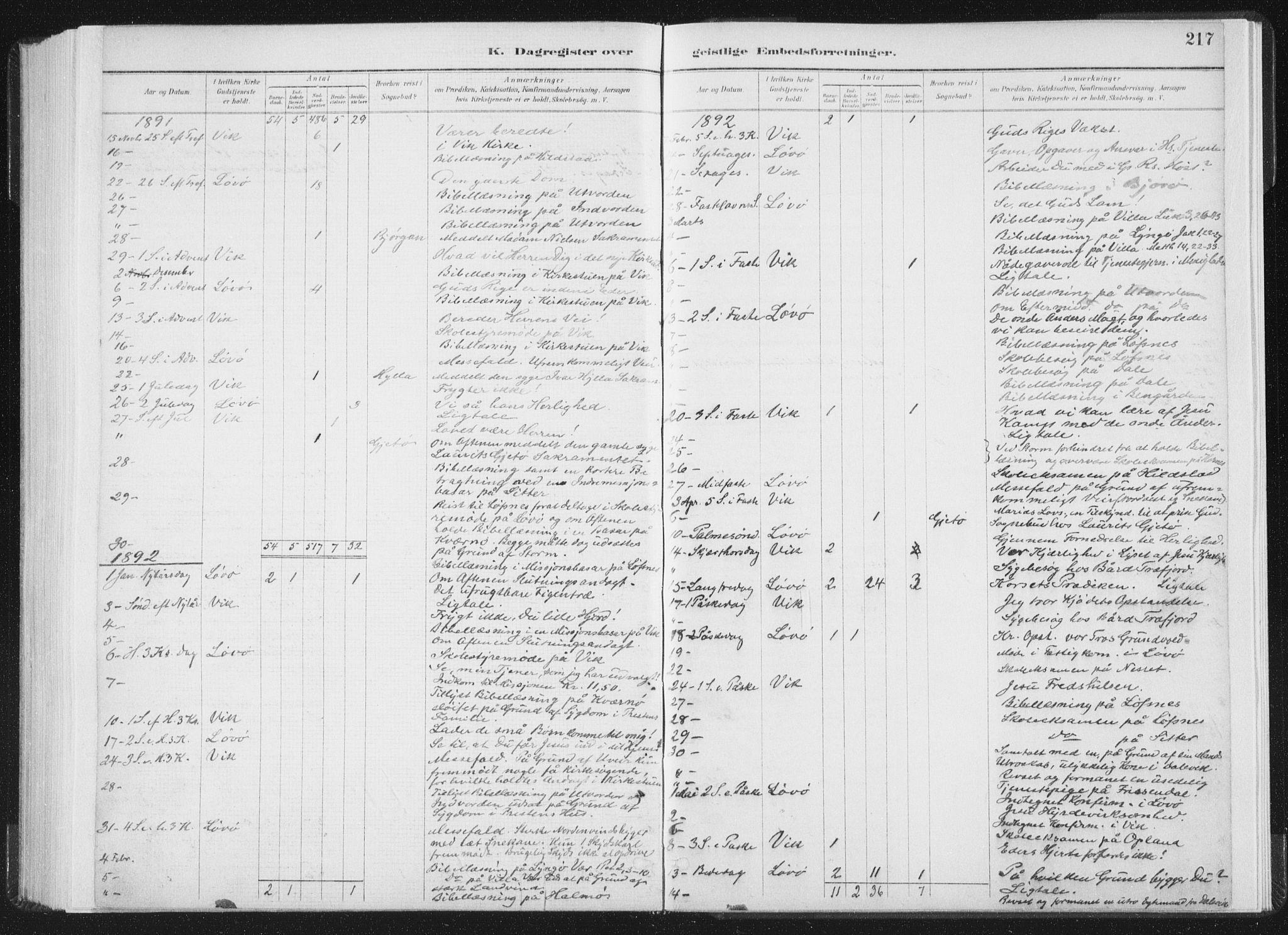 SAT, Ministerialprotokoller, klokkerbøker og fødselsregistre - Nord-Trøndelag, 771/L0597: Ministerialbok nr. 771A04, 1885-1910, s. 217