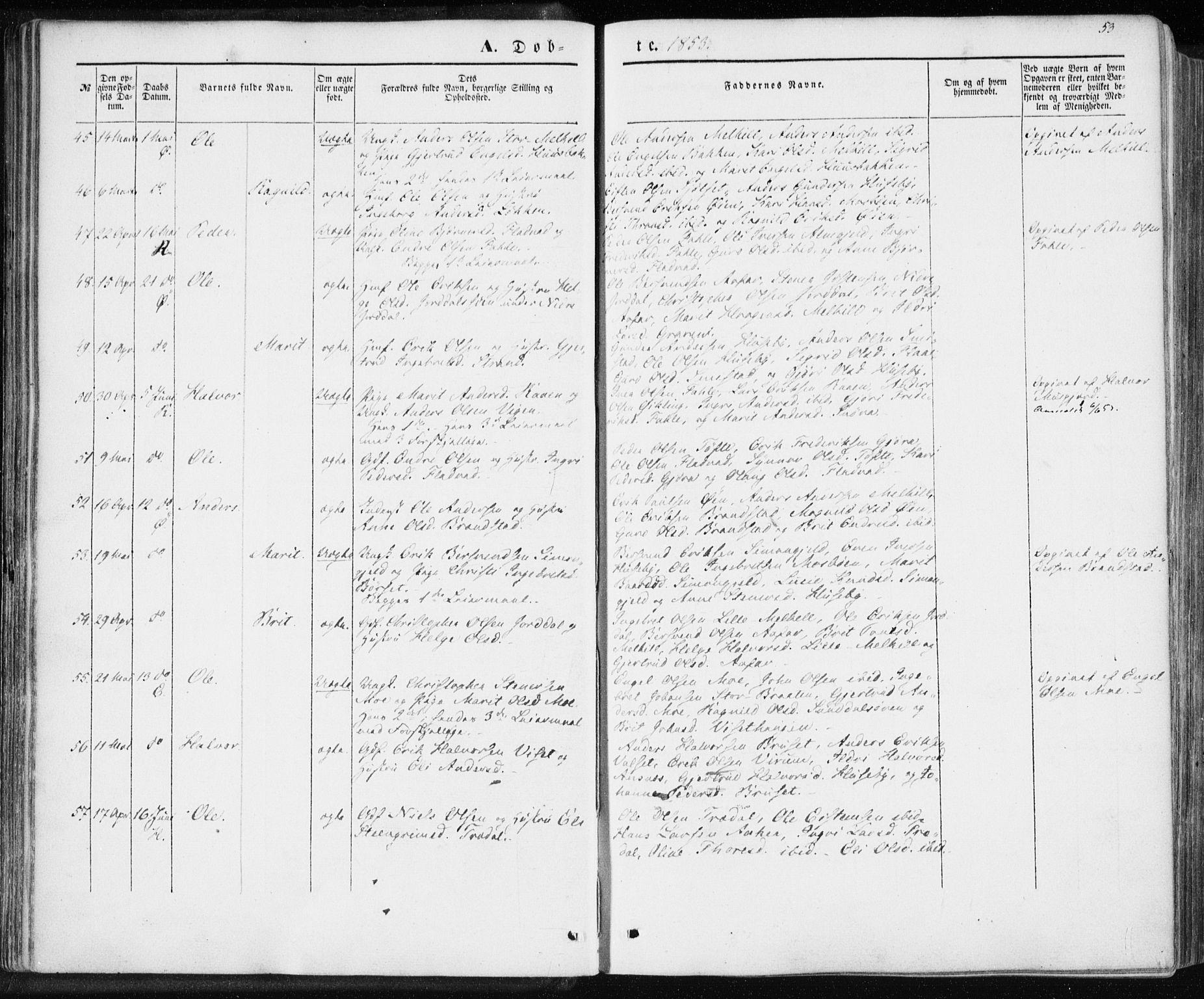 SAT, Ministerialprotokoller, klokkerbøker og fødselsregistre - Møre og Romsdal, 590/L1013: Ministerialbok nr. 590A05, 1847-1877, s. 53