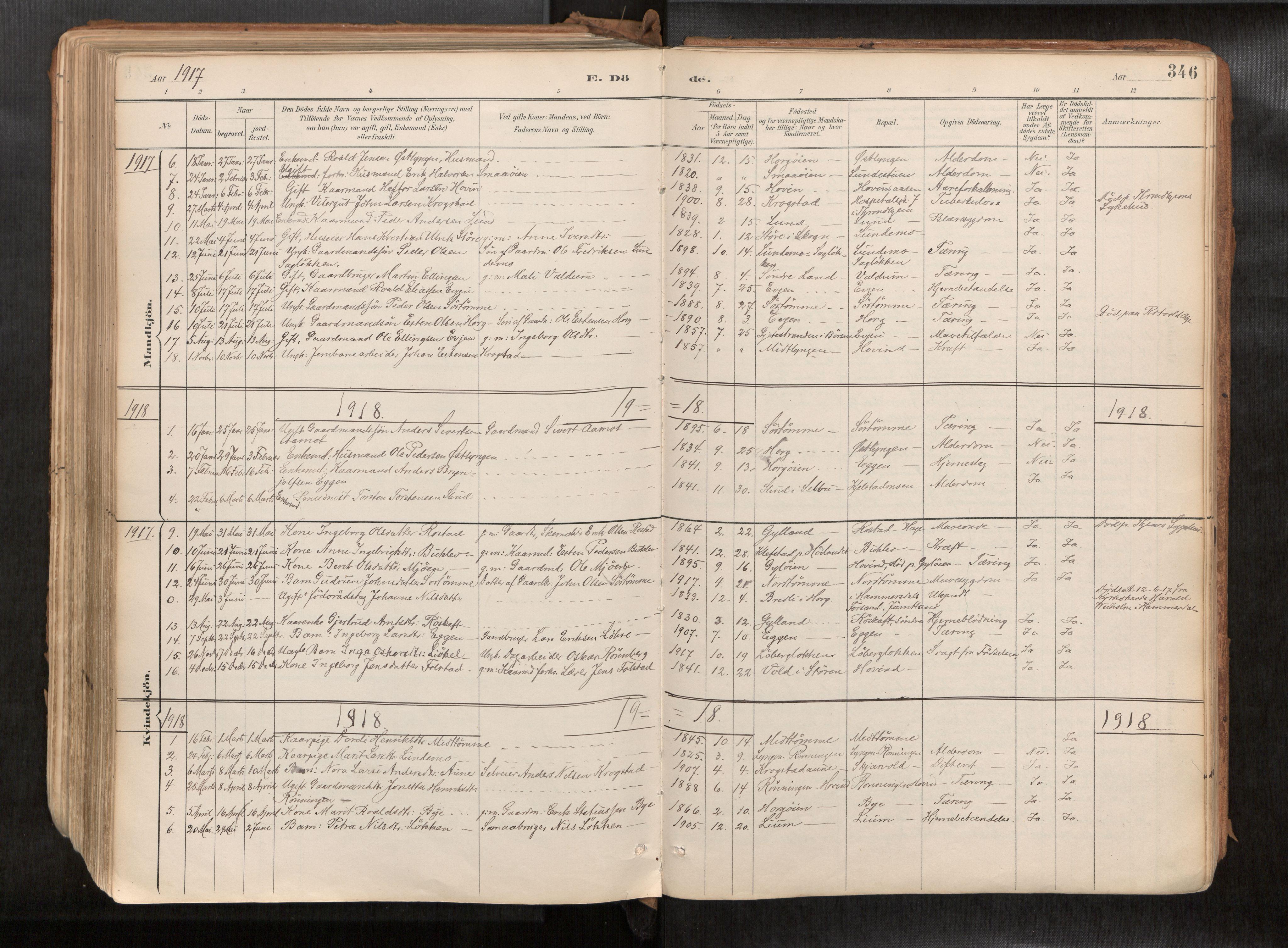 SAT, Ministerialprotokoller, klokkerbøker og fødselsregistre - Sør-Trøndelag, 692/L1105b: Ministerialbok nr. 692A06, 1891-1934, s. 346