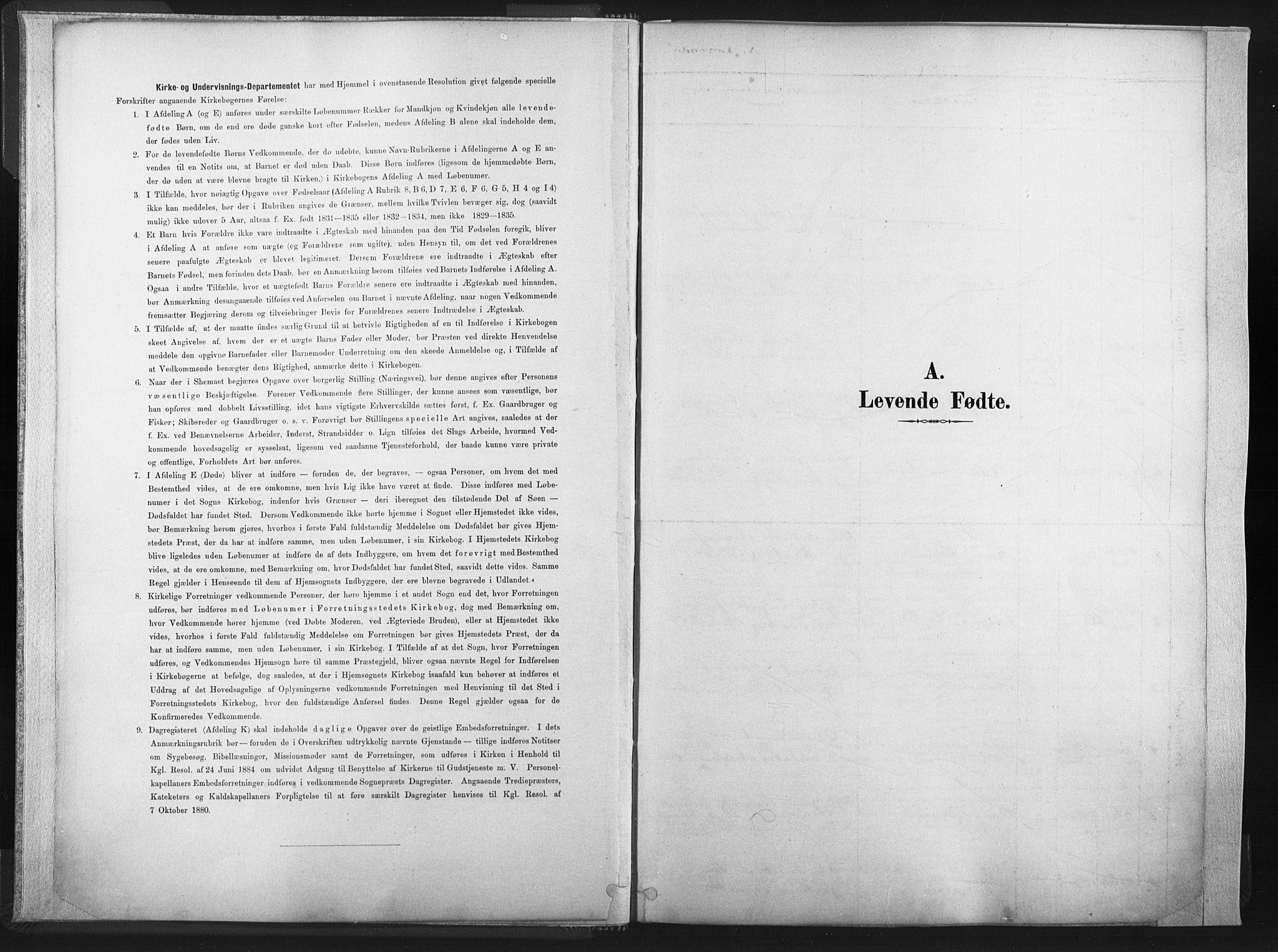 SAT, Ministerialprotokoller, klokkerbøker og fødselsregistre - Nord-Trøndelag, 749/L0474: Ministerialbok nr. 749A08, 1887-1903