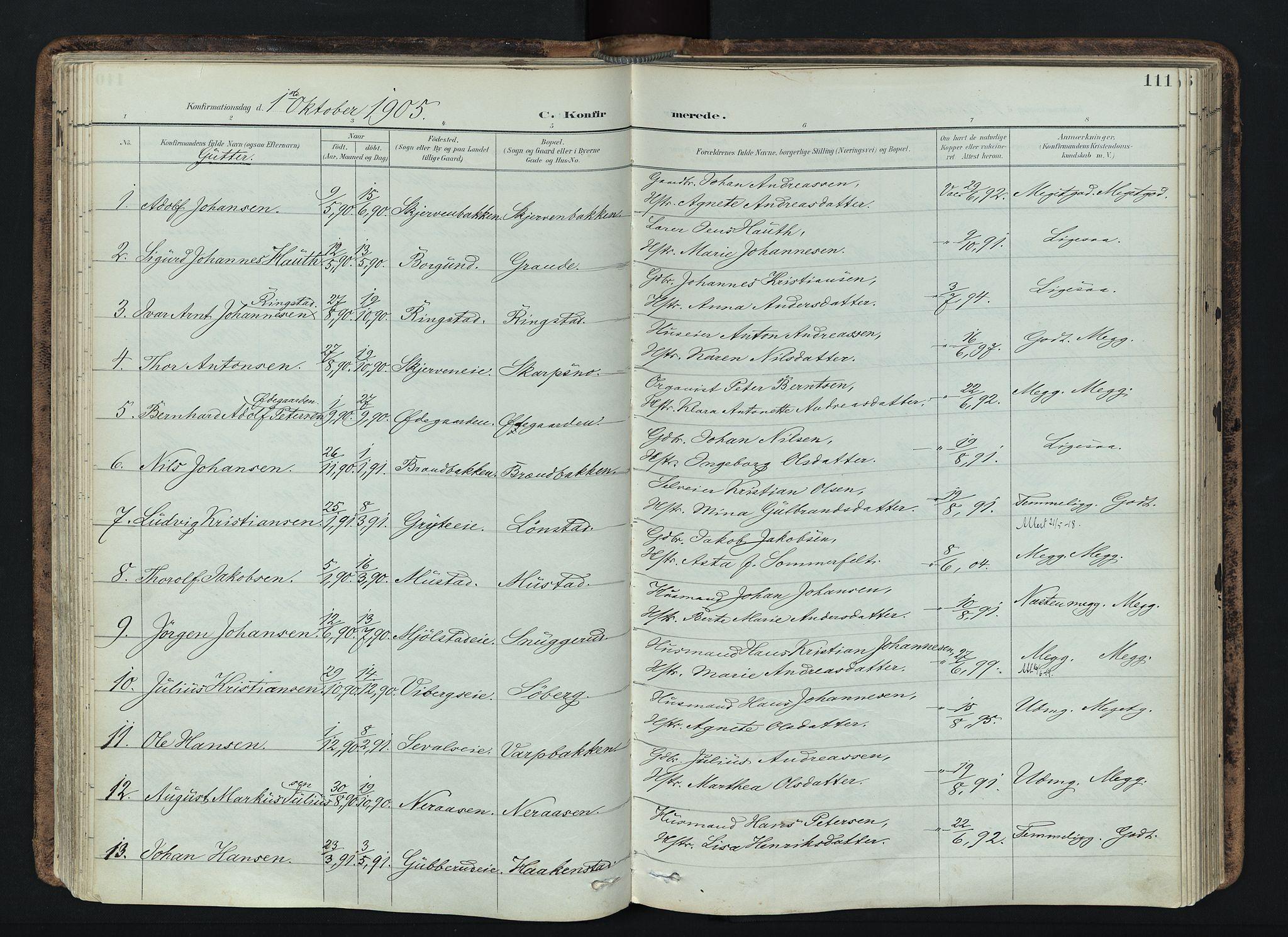 SAH, Vardal prestekontor, H/Ha/Haa/L0019: Ministerialbok nr. 19, 1893-1907, s. 111
