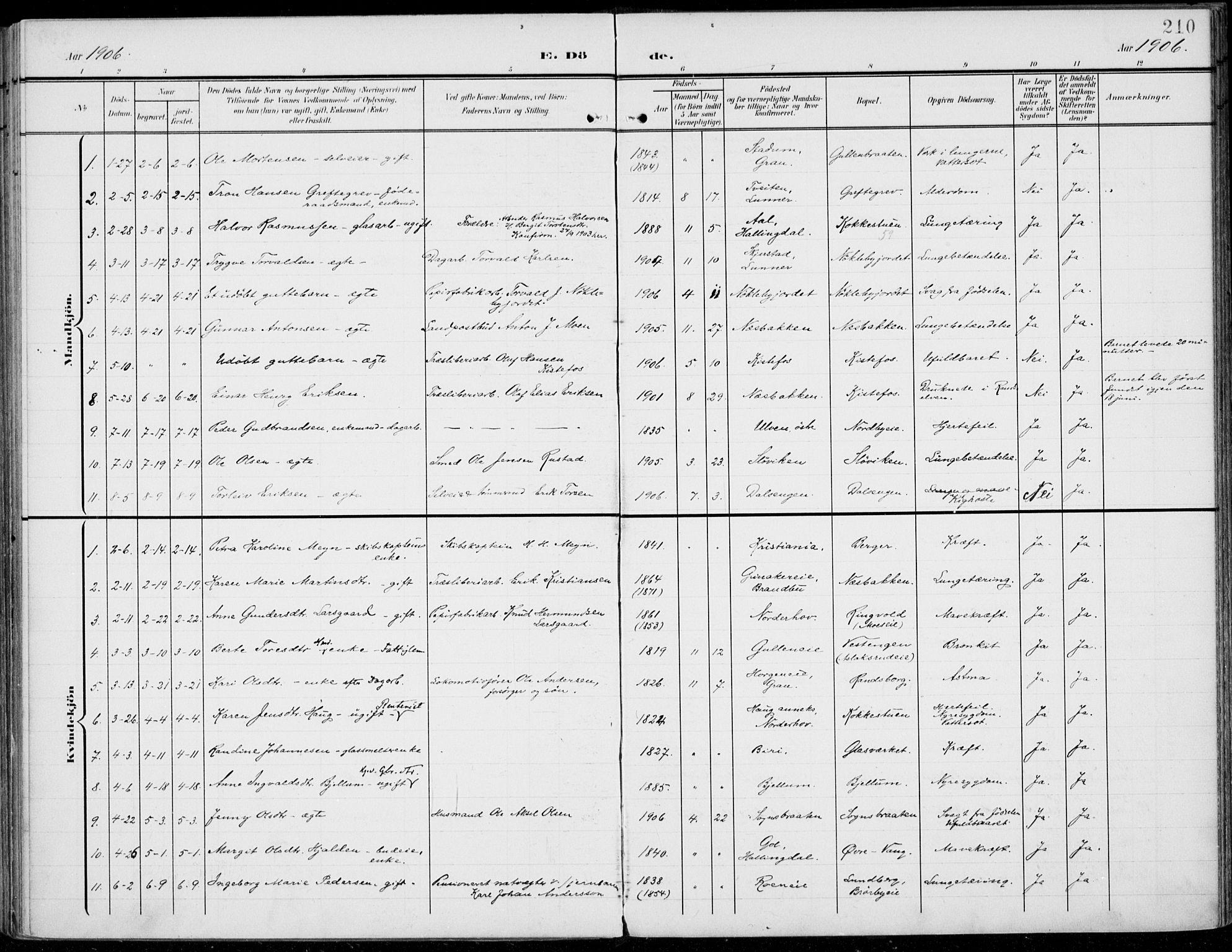 SAH, Jevnaker prestekontor, Ministerialbok nr. 11, 1902-1913, s. 210