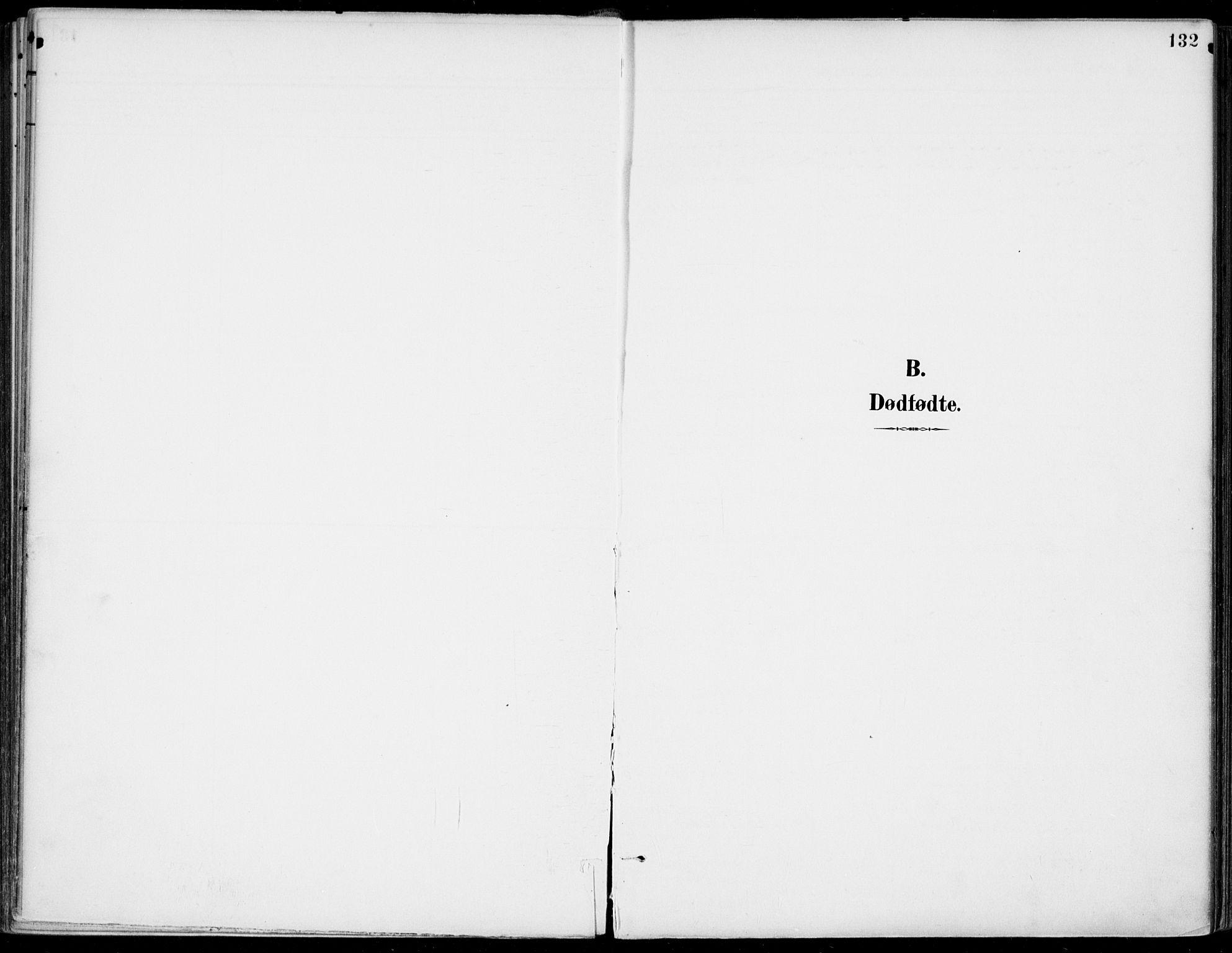 SAKO, Gjerpen kirkebøker, F/Fa/L0011: Ministerialbok nr. 11, 1896-1904, s. 132