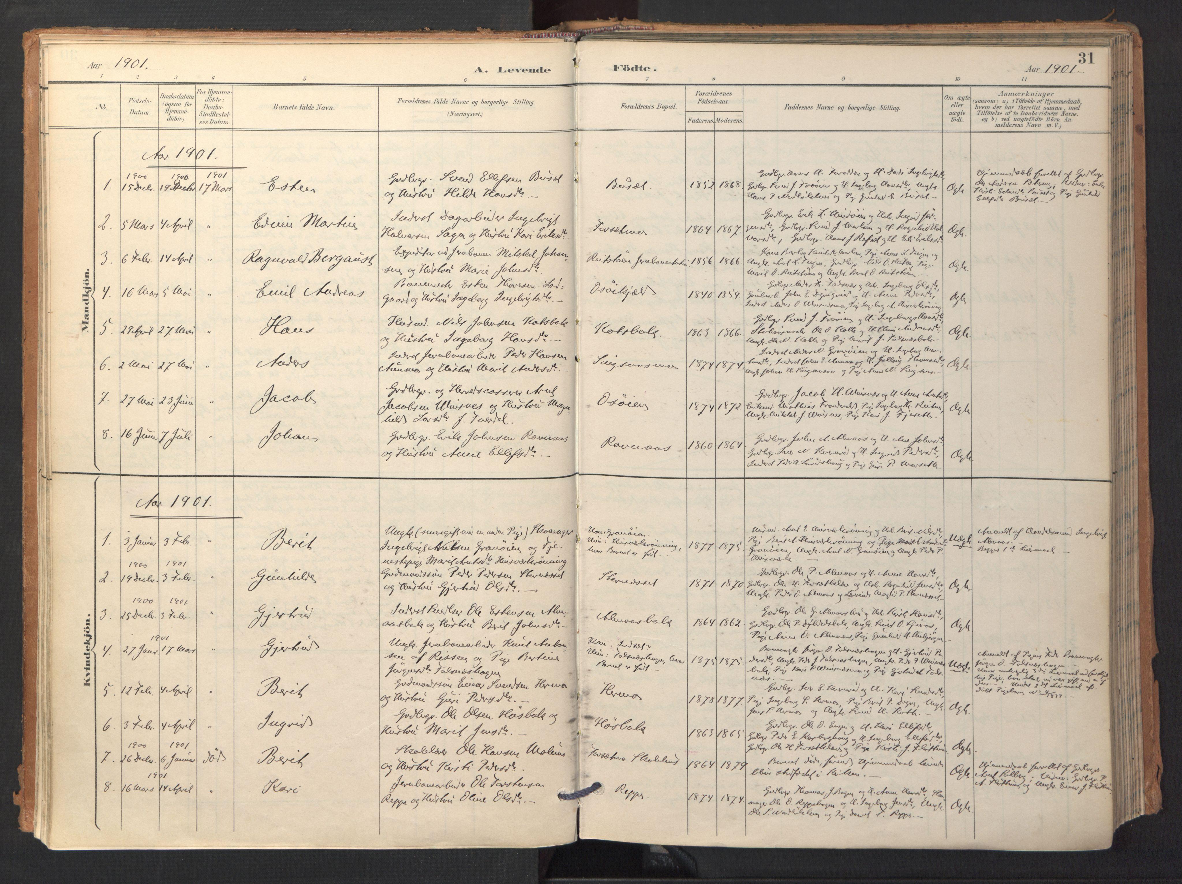 SAT, Ministerialprotokoller, klokkerbøker og fødselsregistre - Sør-Trøndelag, 688/L1025: Ministerialbok nr. 688A02, 1891-1909, s. 31