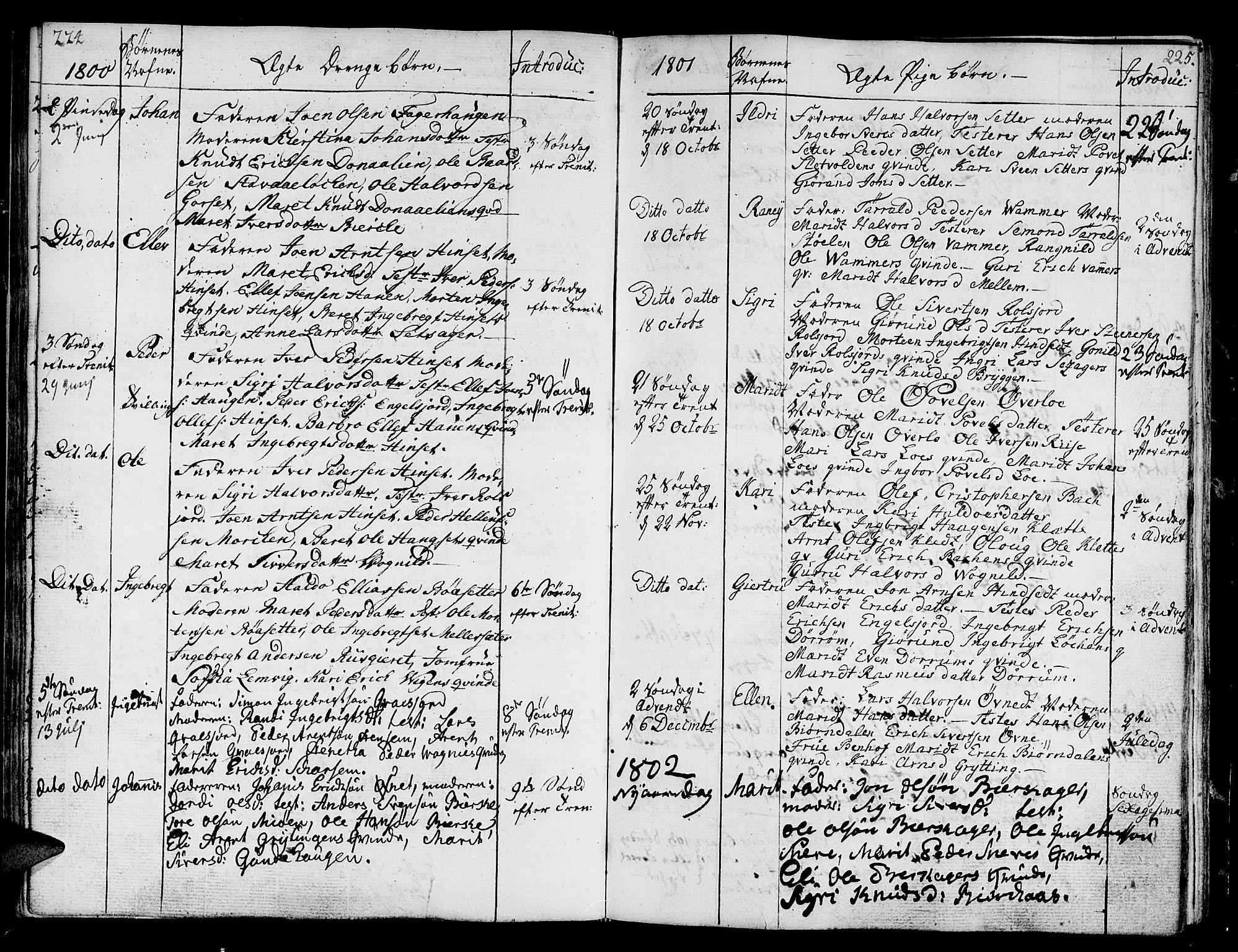 SAT, Ministerialprotokoller, klokkerbøker og fødselsregistre - Sør-Trøndelag, 678/L0893: Ministerialbok nr. 678A03, 1792-1805, s. 224-225