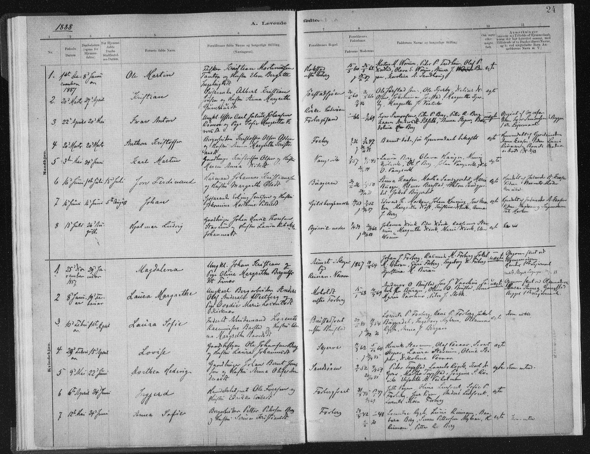 SAT, Ministerialprotokoller, klokkerbøker og fødselsregistre - Nord-Trøndelag, 722/L0220: Ministerialbok nr. 722A07, 1881-1908, s. 24