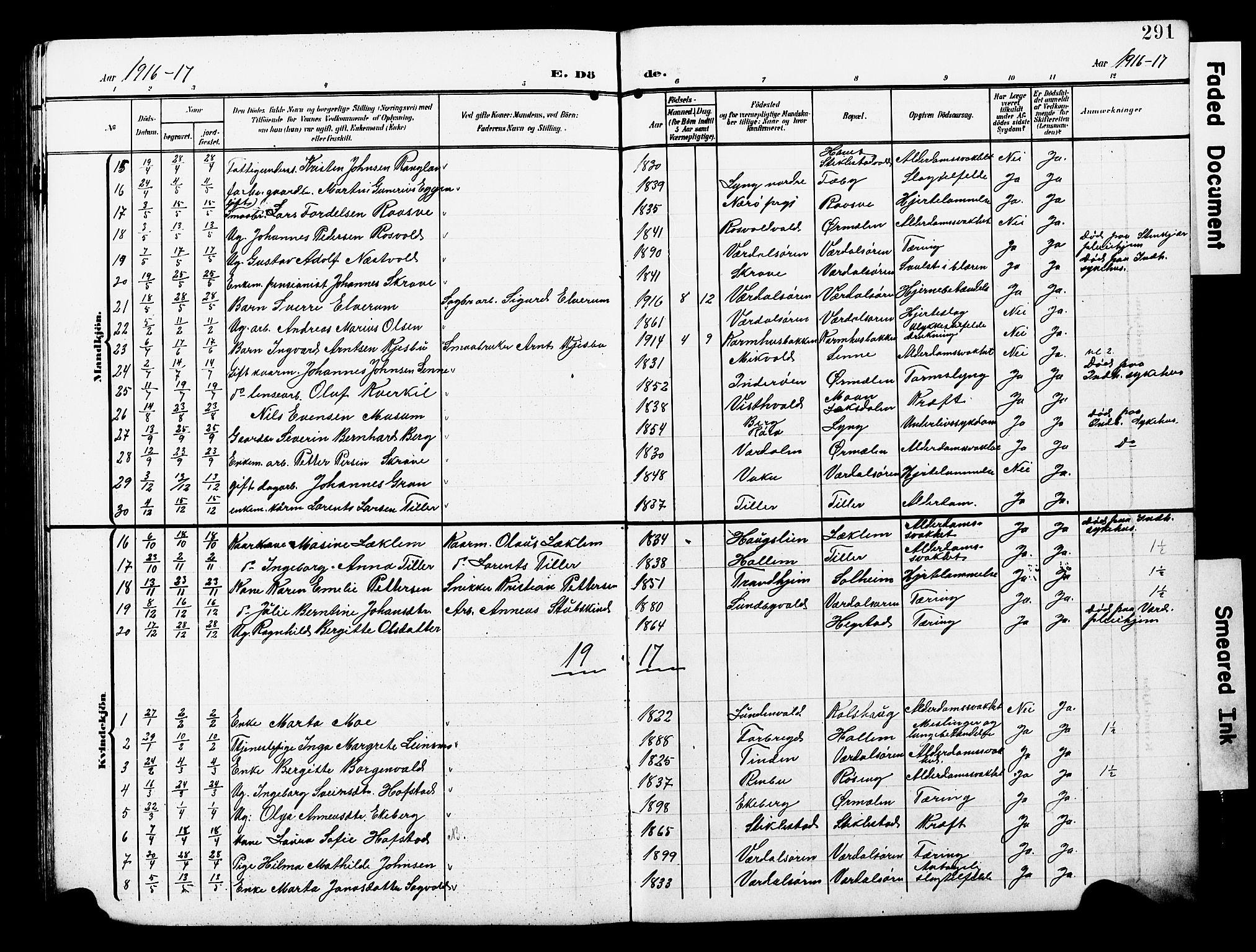 SAT, Ministerialprotokoller, klokkerbøker og fødselsregistre - Nord-Trøndelag, 723/L0258: Klokkerbok nr. 723C06, 1908-1927, s. 291