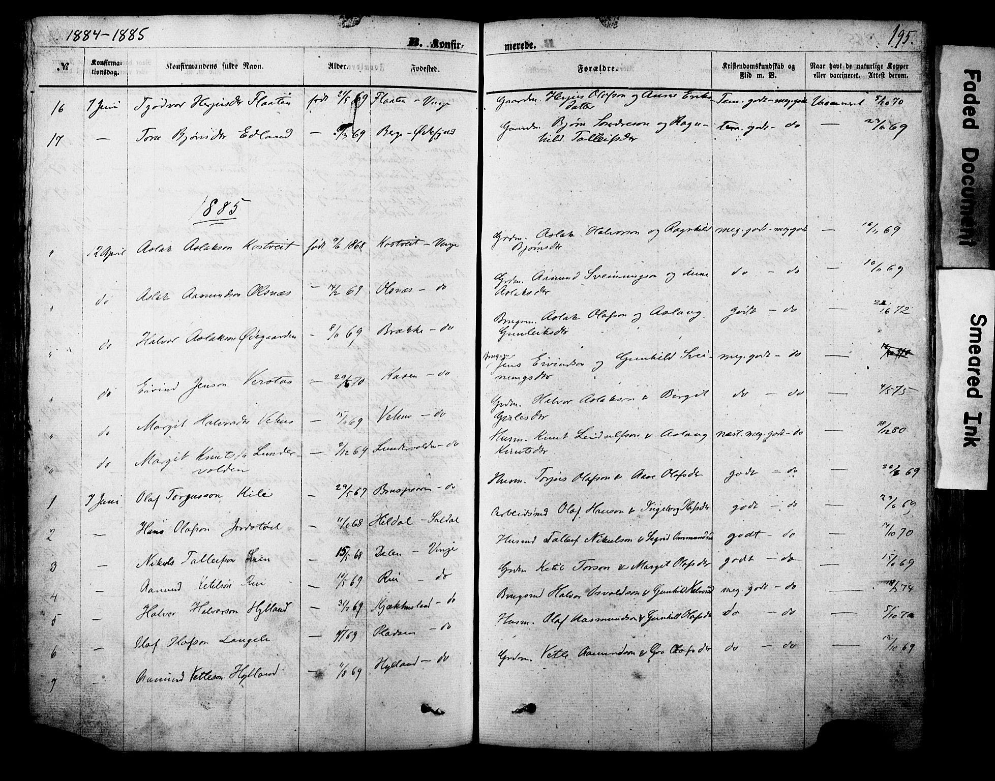 SAKO, Vinje kirkebøker, F/Fa/L0005: Ministerialbok nr. I 5, 1870-1886, s. 195