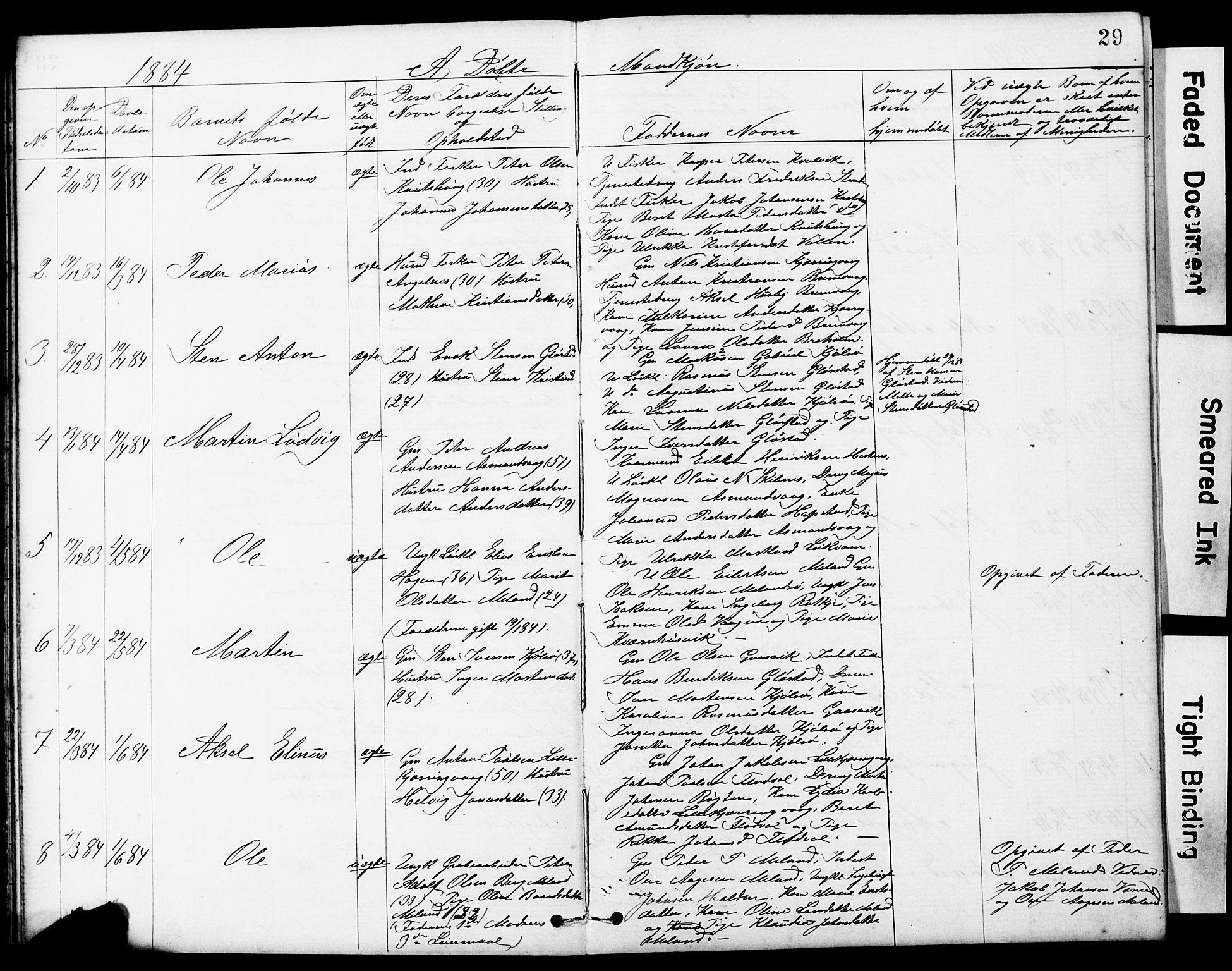 SAT, Ministerialprotokoller, klokkerbøker og fødselsregistre - Sør-Trøndelag, 634/L0541: Klokkerbok nr. 634C03, 1874-1891, s. 29