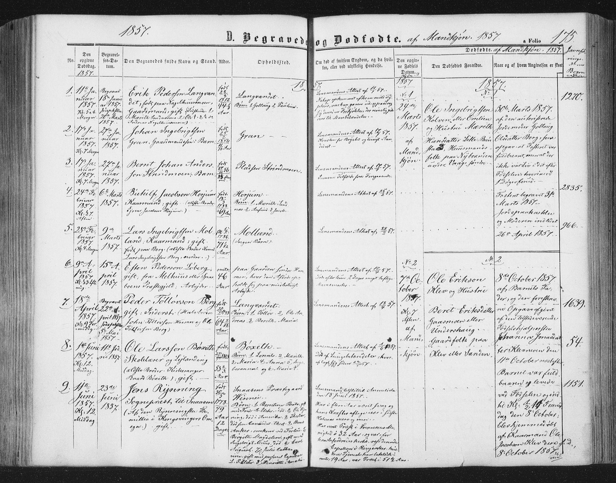 SAT, Ministerialprotokoller, klokkerbøker og fødselsregistre - Nord-Trøndelag, 749/L0472: Ministerialbok nr. 749A06, 1857-1873, s. 175