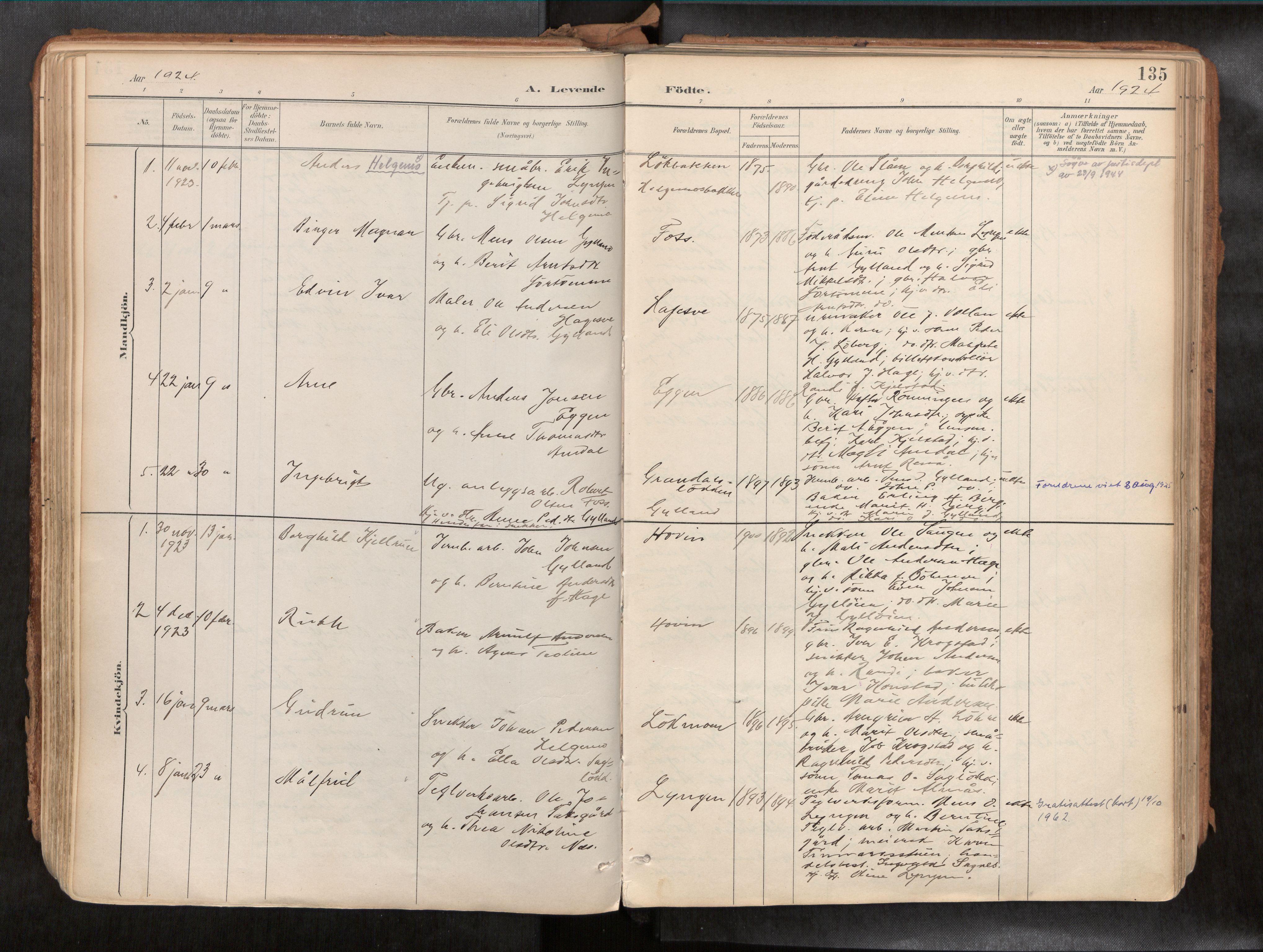 SAT, Ministerialprotokoller, klokkerbøker og fødselsregistre - Sør-Trøndelag, 692/L1105b: Ministerialbok nr. 692A06, 1891-1934, s. 135