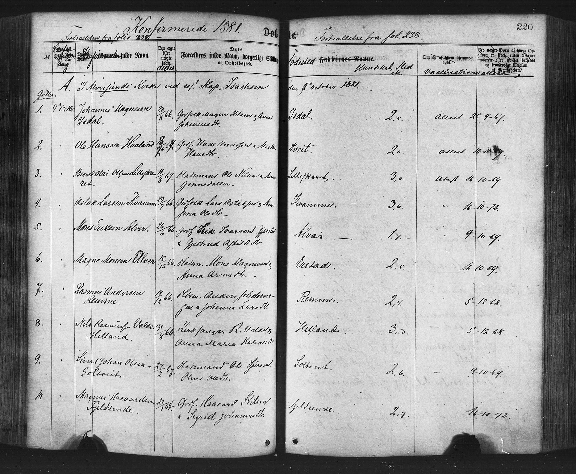 SAB, Hamre Sokneprestembete, H/Haa: Ministerialbok nr. A 15, 1870-1881, s. 220