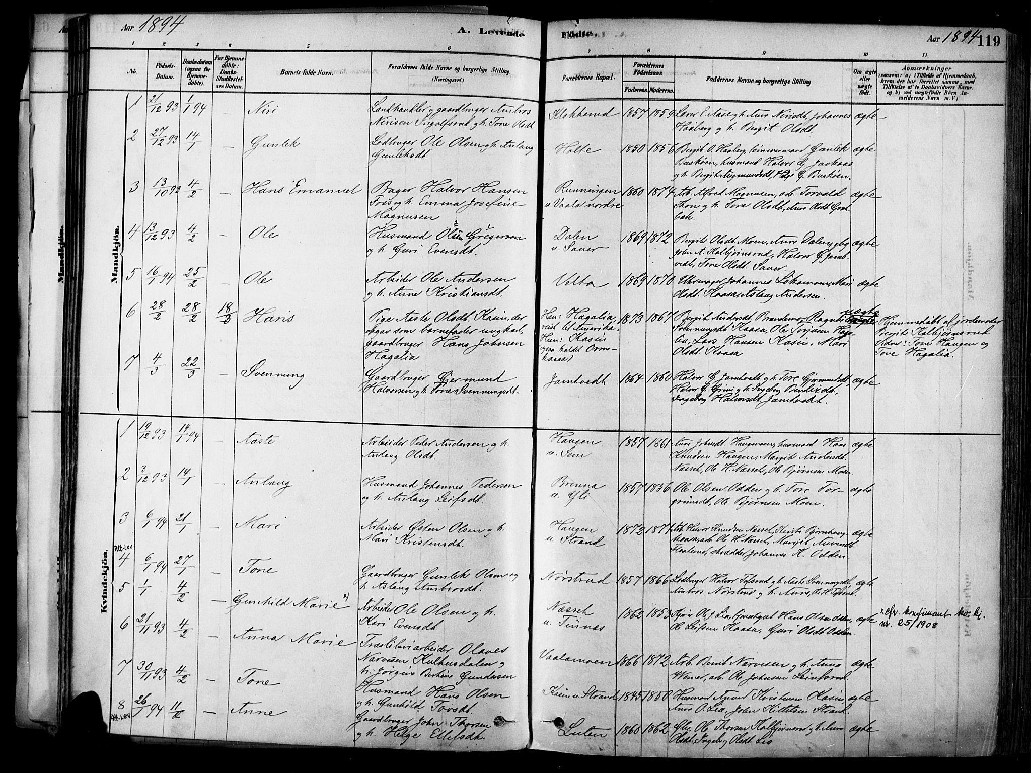 SAKO, Heddal kirkebøker, F/Fa/L0008: Ministerialbok nr. I 8, 1878-1903, s. 119