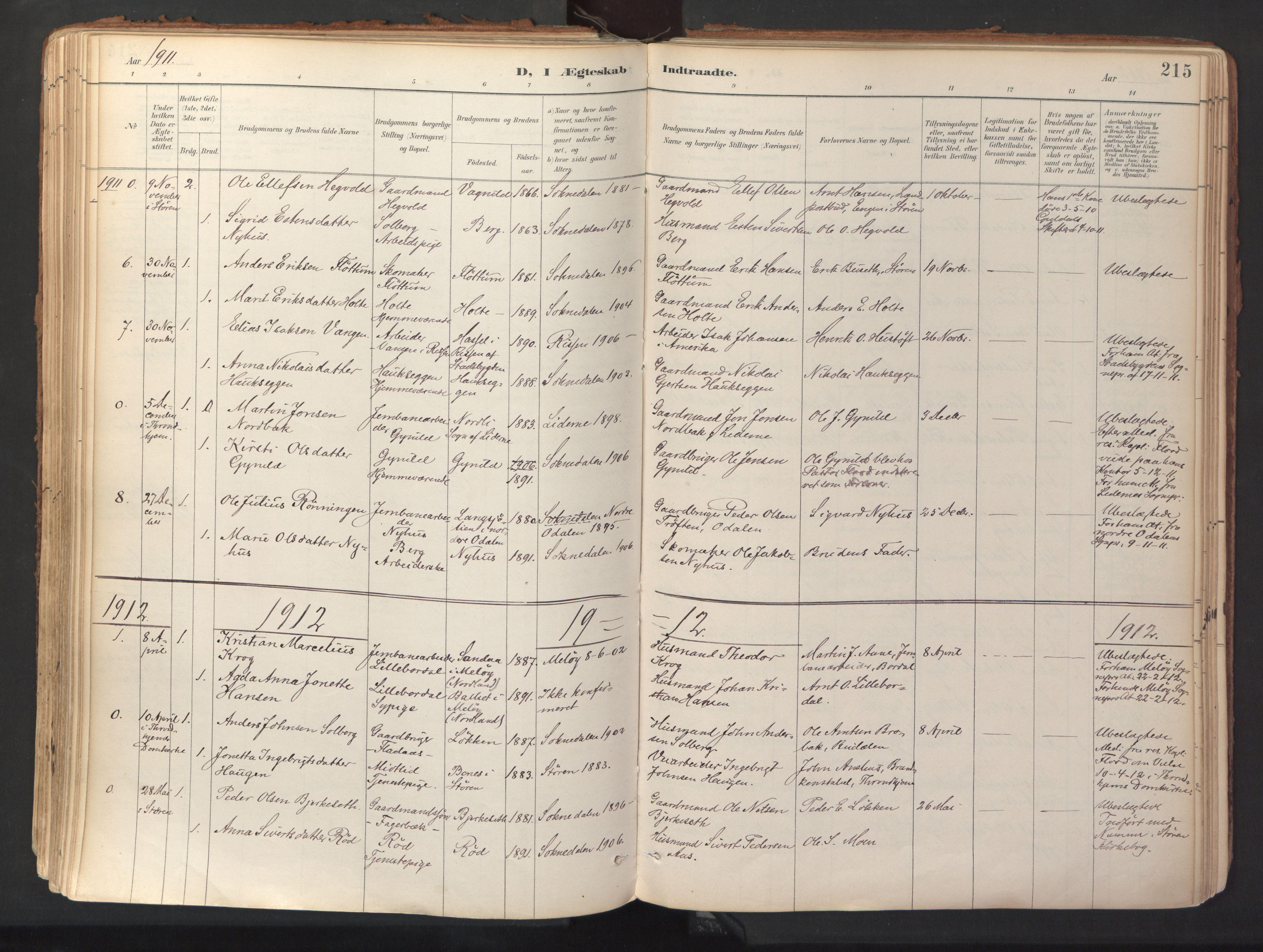 SAT, Ministerialprotokoller, klokkerbøker og fødselsregistre - Sør-Trøndelag, 689/L1041: Ministerialbok nr. 689A06, 1891-1923, s. 215