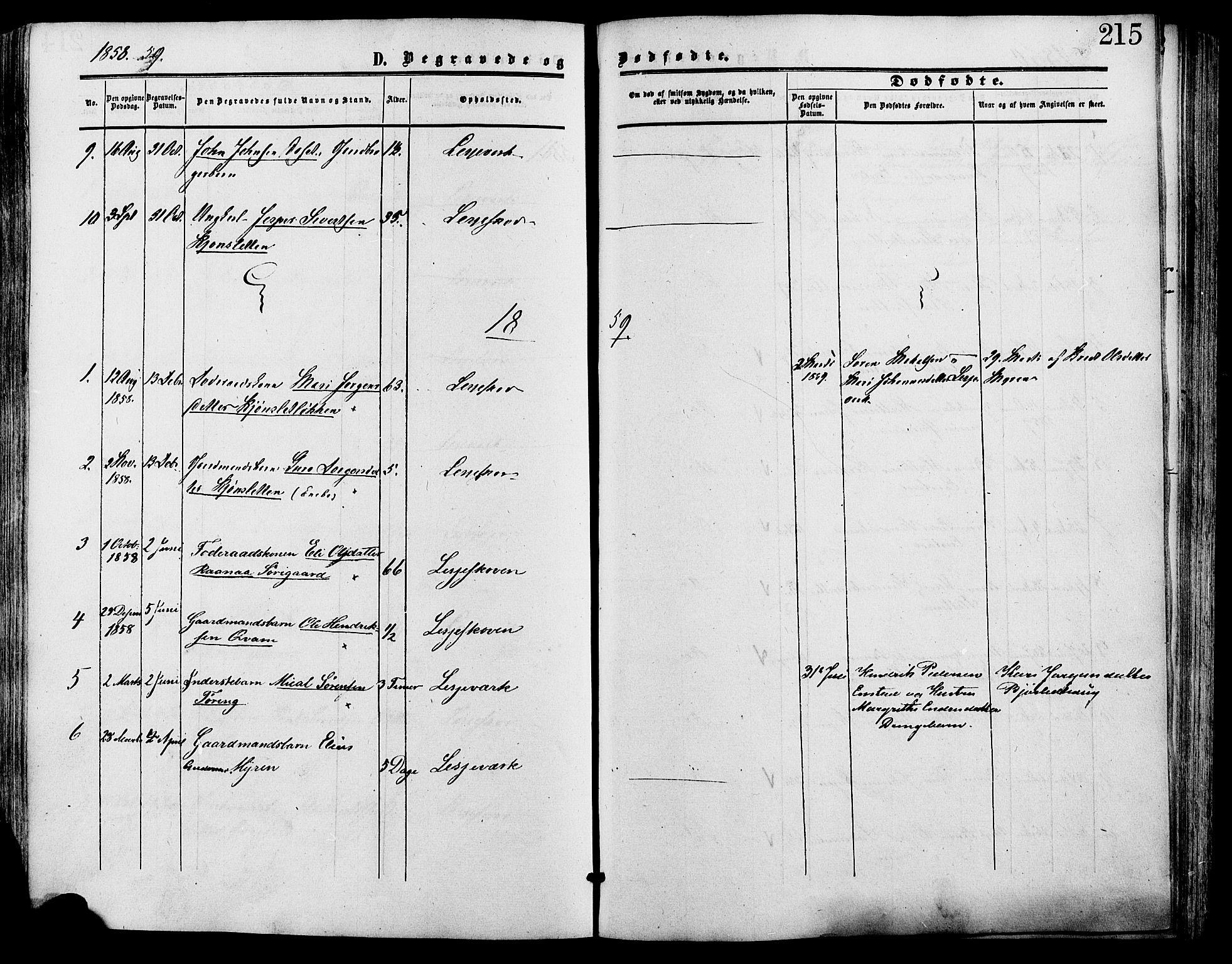 SAH, Lesja prestekontor, Ministerialbok nr. 9, 1854-1889, s. 215