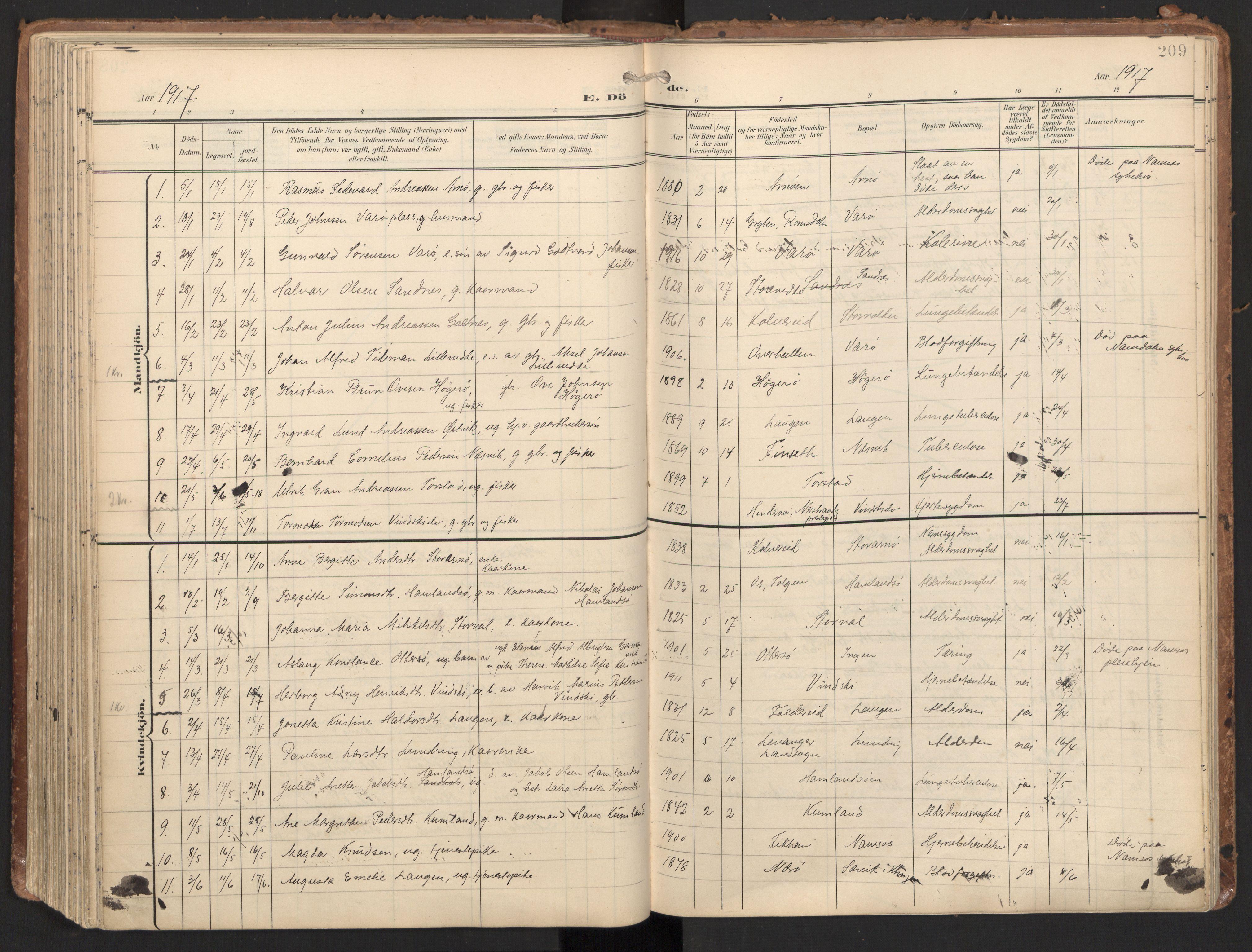 SAT, Ministerialprotokoller, klokkerbøker og fødselsregistre - Nord-Trøndelag, 784/L0677: Ministerialbok nr. 784A12, 1900-1920, s. 209