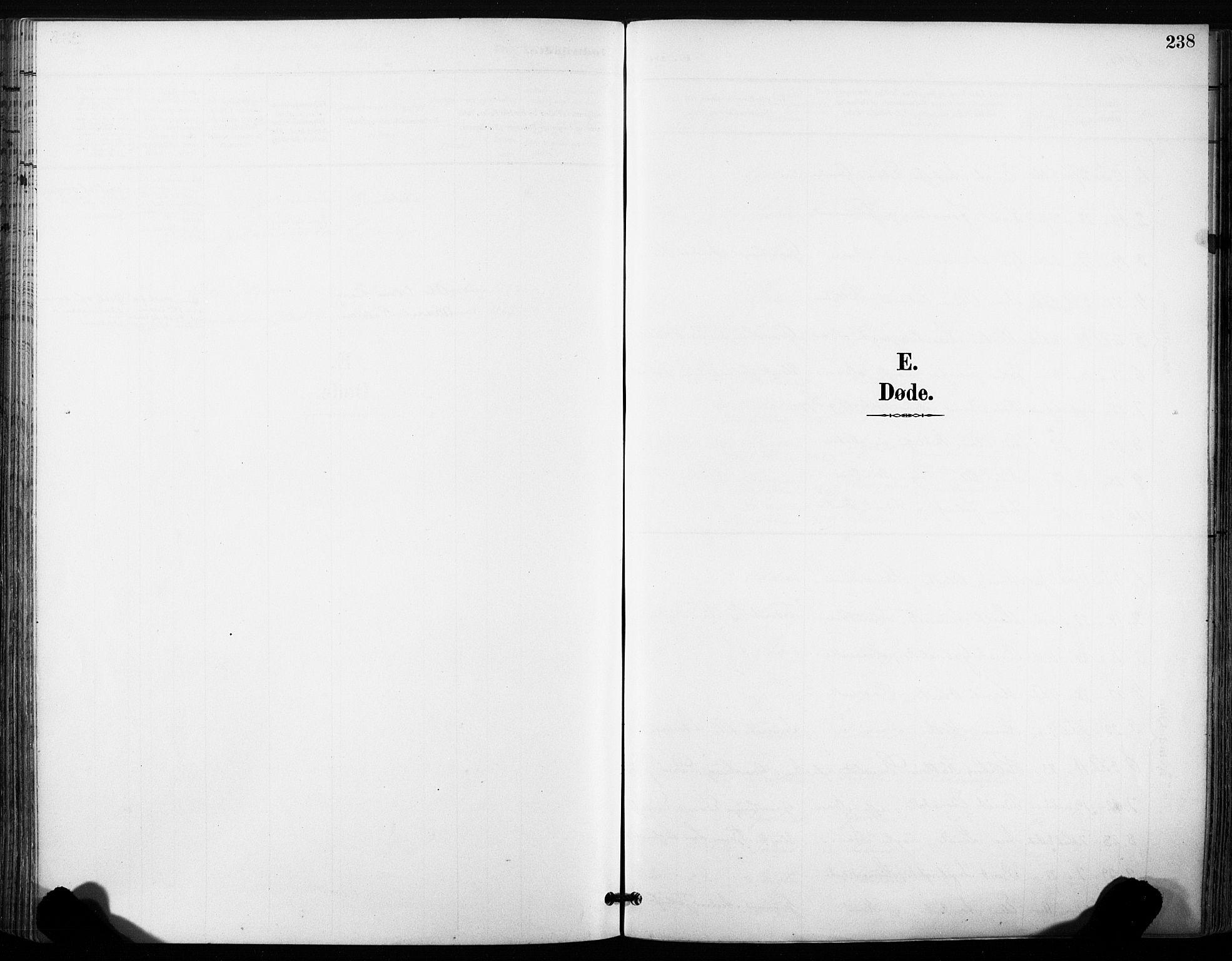 SAT, Ministerialprotokoller, klokkerbøker og fødselsregistre - Sør-Trøndelag, 630/L0497: Ministerialbok nr. 630A10, 1896-1910, s. 238