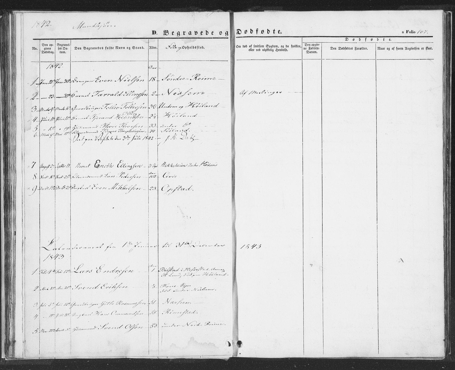 SAST, Hå sokneprestkontor, 30BA/L0006: Ministerialbok nr. A 5, 1842-1853, s. 107