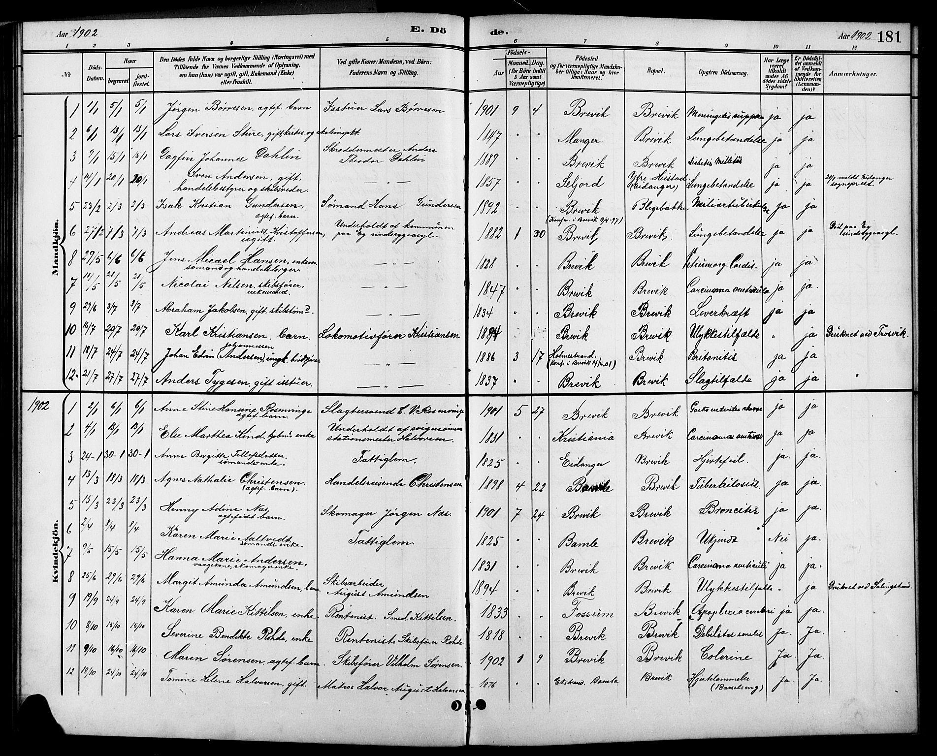 SAKO, Brevik kirkebøker, G/Ga/L0005: Klokkerbok nr. 5, 1901-1924, s. 181