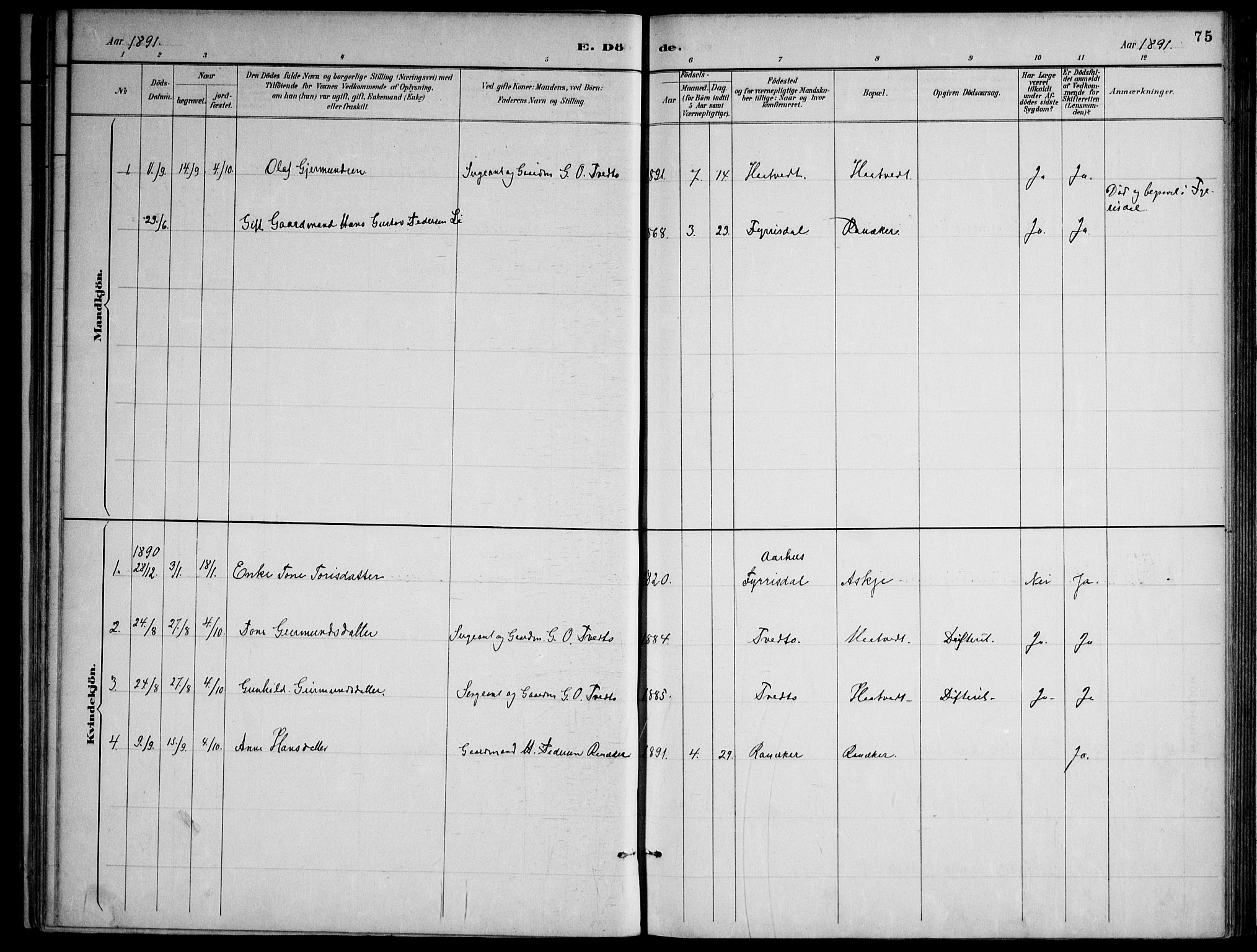 SAKO, Lårdal kirkebøker, F/Fa/L0007: Ministerialbok nr. I 7, 1887-1906, s. 75
