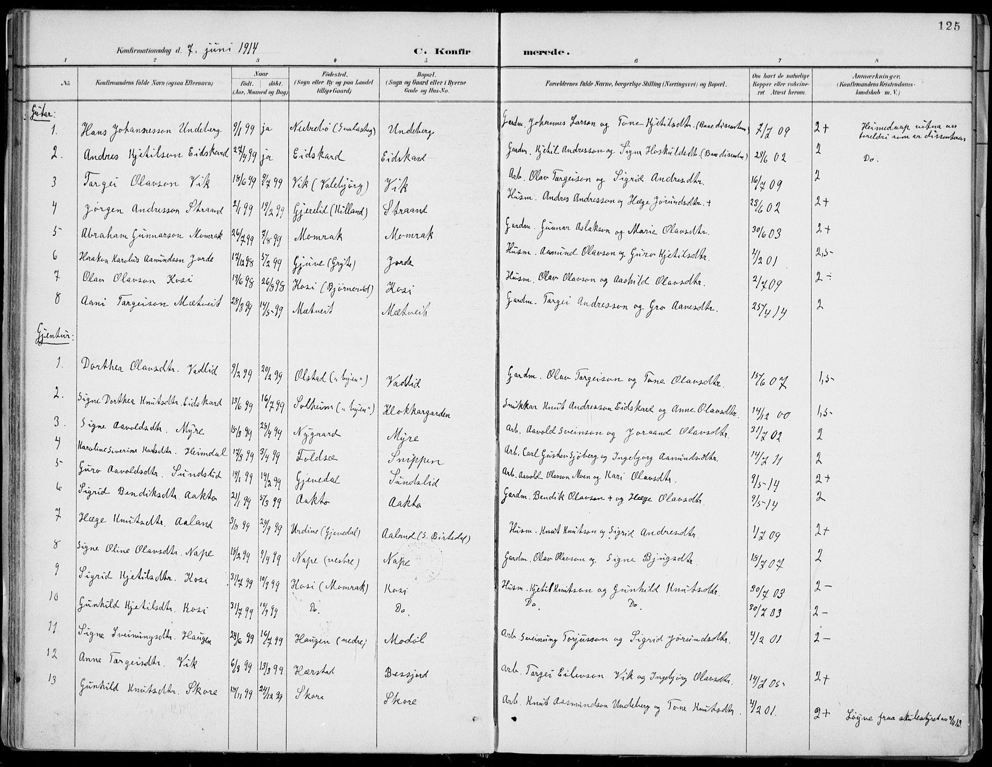 SAKO, Fyresdal kirkebøker, F/Fa/L0007: Ministerialbok nr. I 7, 1887-1914, s. 125