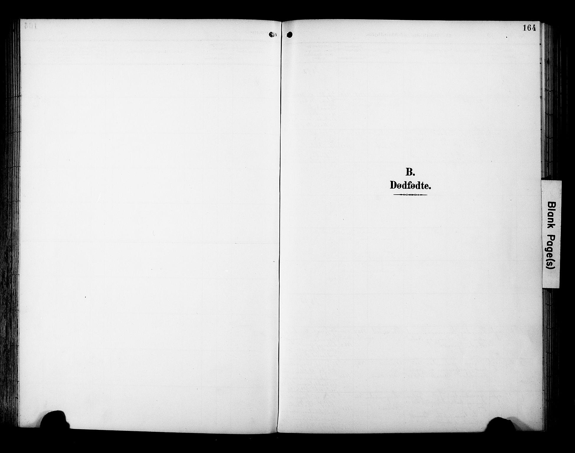 SAT, Ministerialprotokoller, klokkerbøker og fødselsregistre - Sør-Trøndelag, 695/L1149: Ministerialbok nr. 695A09, 1891-1902, s. 164