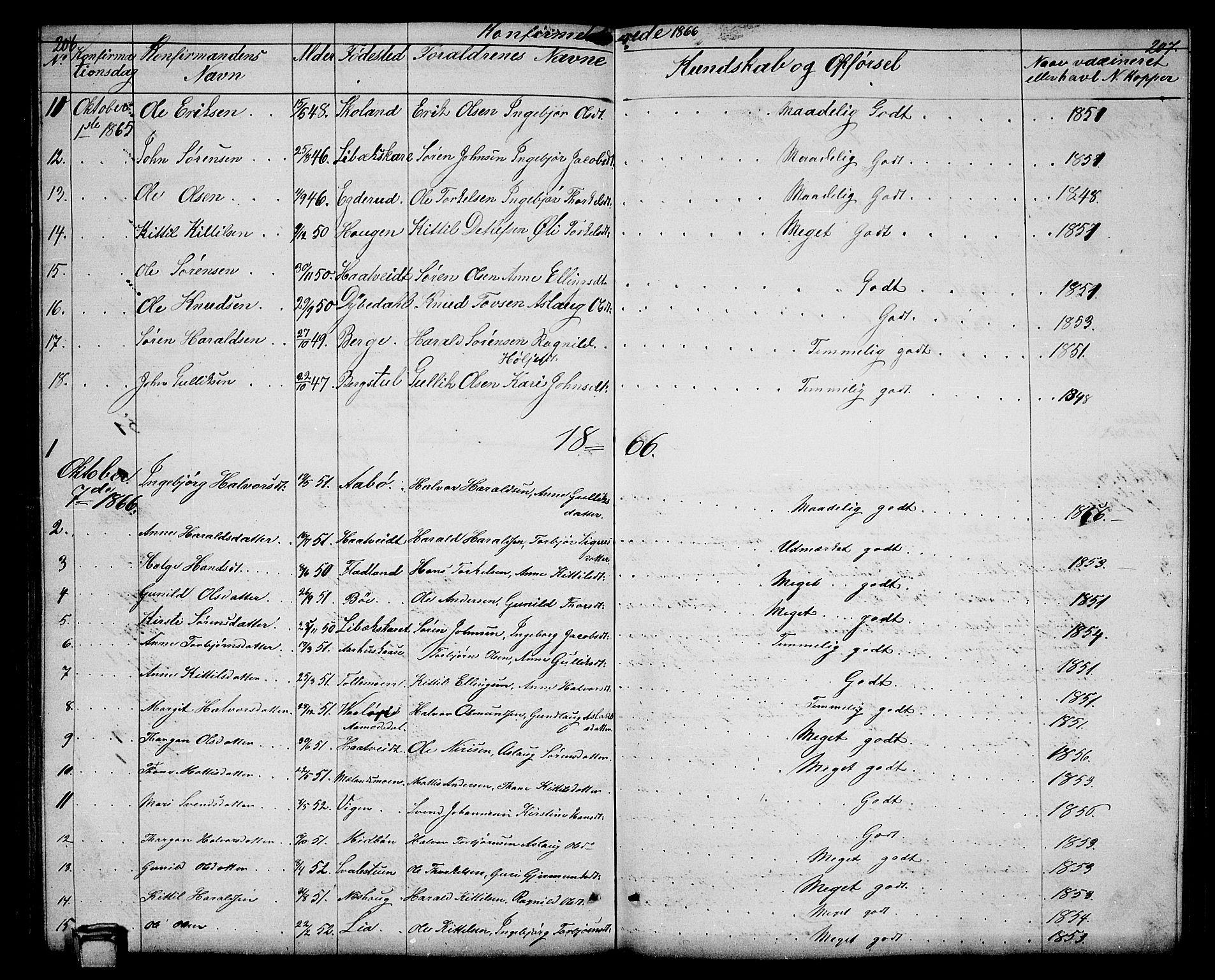 SAKO, Hjartdal kirkebøker, G/Ga/L0002: Klokkerbok nr. I 2, 1854-1888, s. 206-207