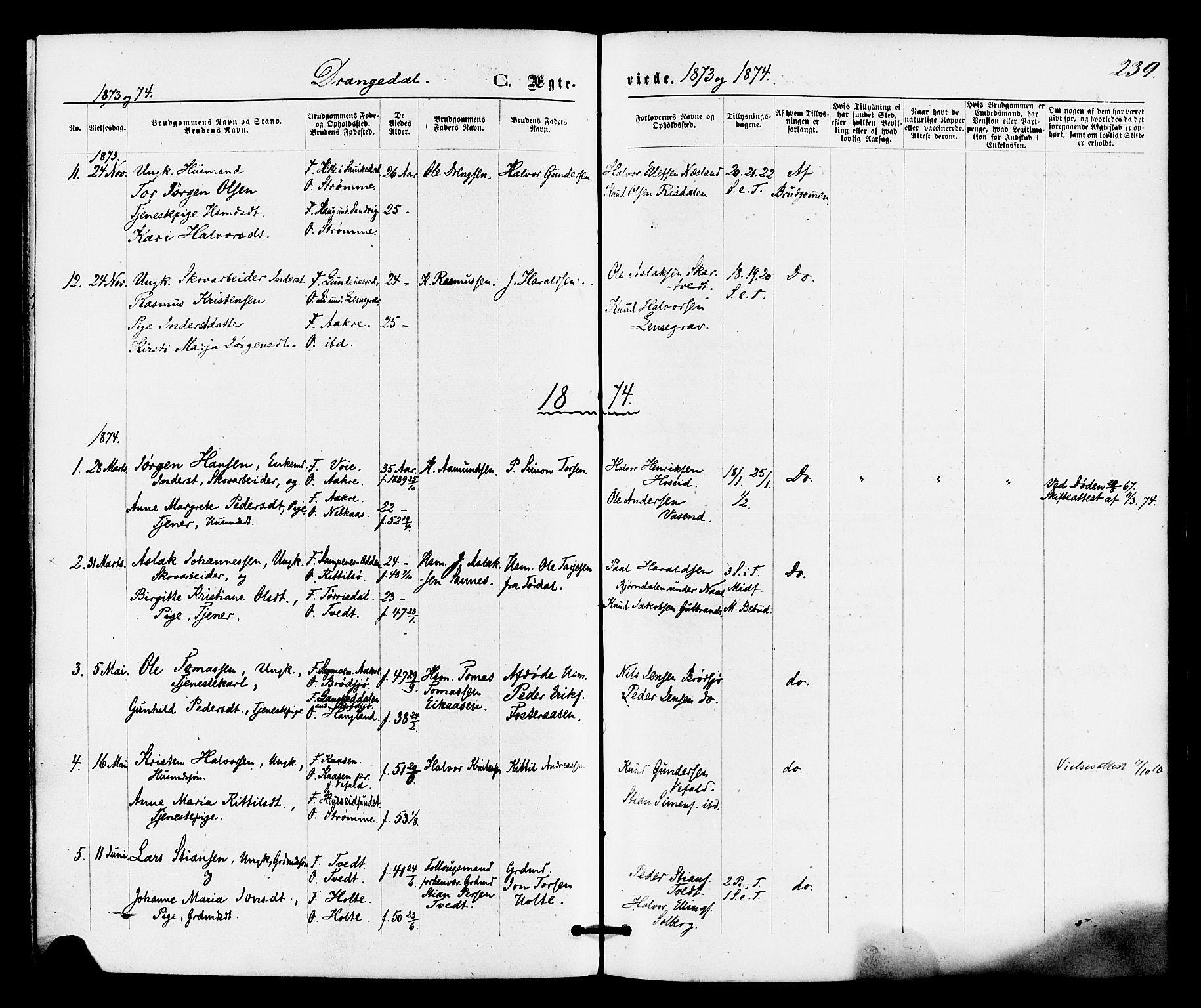 SAKO, Drangedal kirkebøker, F/Fa/L0009: Ministerialbok nr. 9 /1, 1872-1884, s. 239
