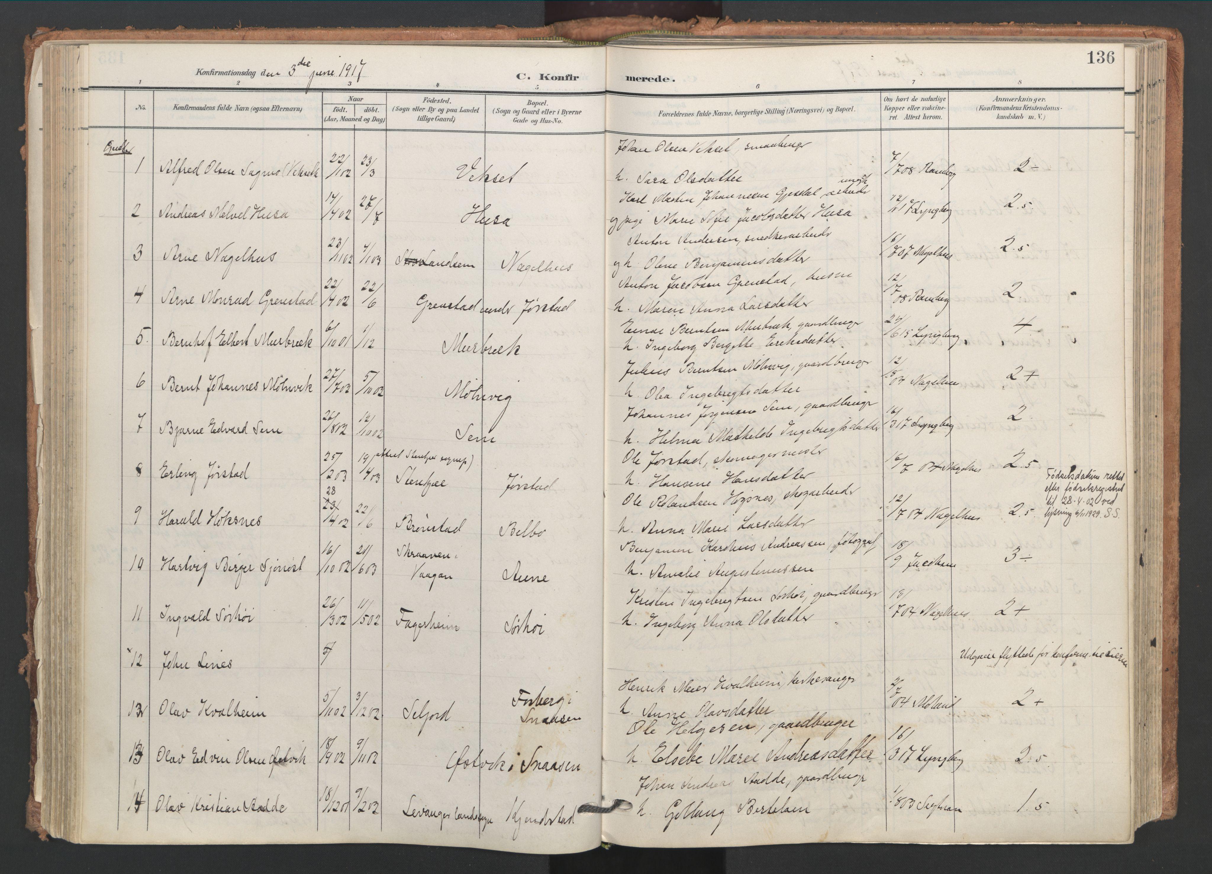 SAT, Ministerialprotokoller, klokkerbøker og fødselsregistre - Nord-Trøndelag, 749/L0477: Ministerialbok nr. 749A11, 1902-1927, s. 136