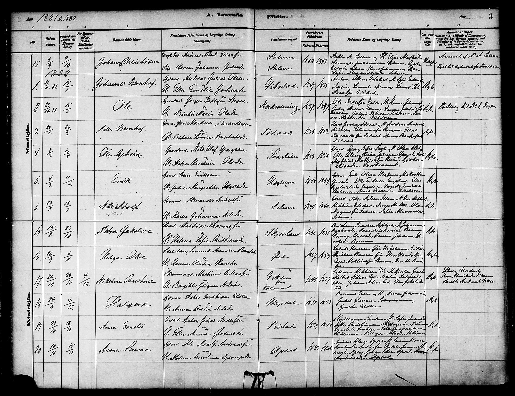 SAT, Ministerialprotokoller, klokkerbøker og fødselsregistre - Nord-Trøndelag, 764/L0555: Ministerialbok nr. 764A10, 1881-1896, s. 3