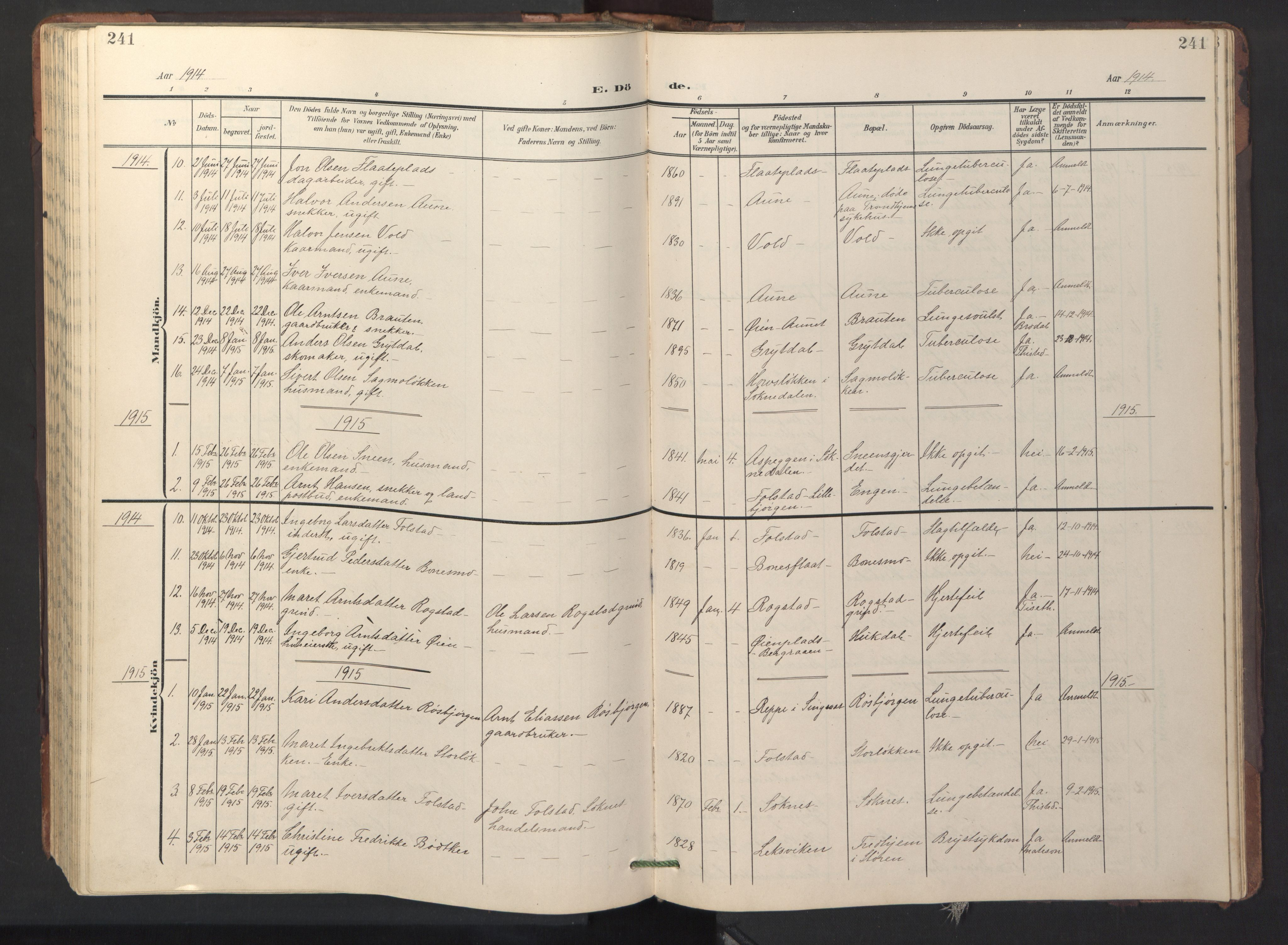 SAT, Ministerialprotokoller, klokkerbøker og fødselsregistre - Sør-Trøndelag, 687/L1019: Klokkerbok nr. 687C03, 1904-1931, s. 241