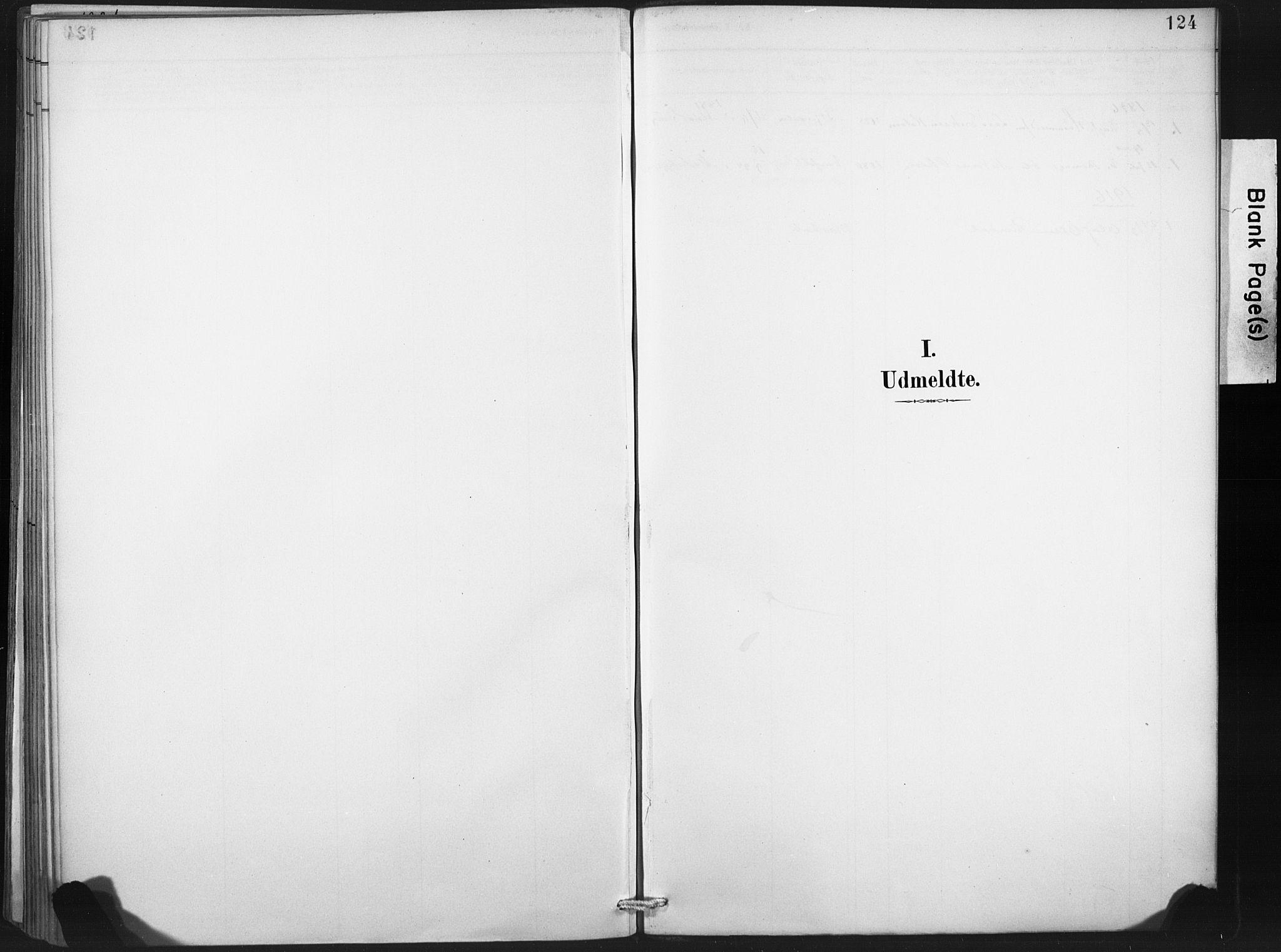 SAT, Ministerialprotokoller, klokkerbøker og fødselsregistre - Nord-Trøndelag, 718/L0175: Ministerialbok nr. 718A01, 1890-1923, s. 124