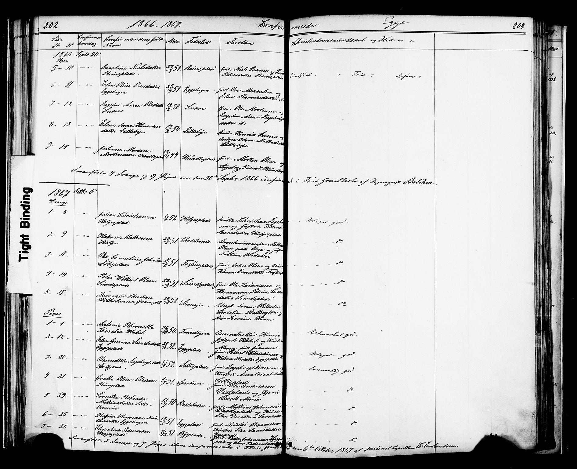 SAT, Ministerialprotokoller, klokkerbøker og fødselsregistre - Nord-Trøndelag, 739/L0367: Ministerialbok nr. 739A01 /3, 1838-1868, s. 202-203