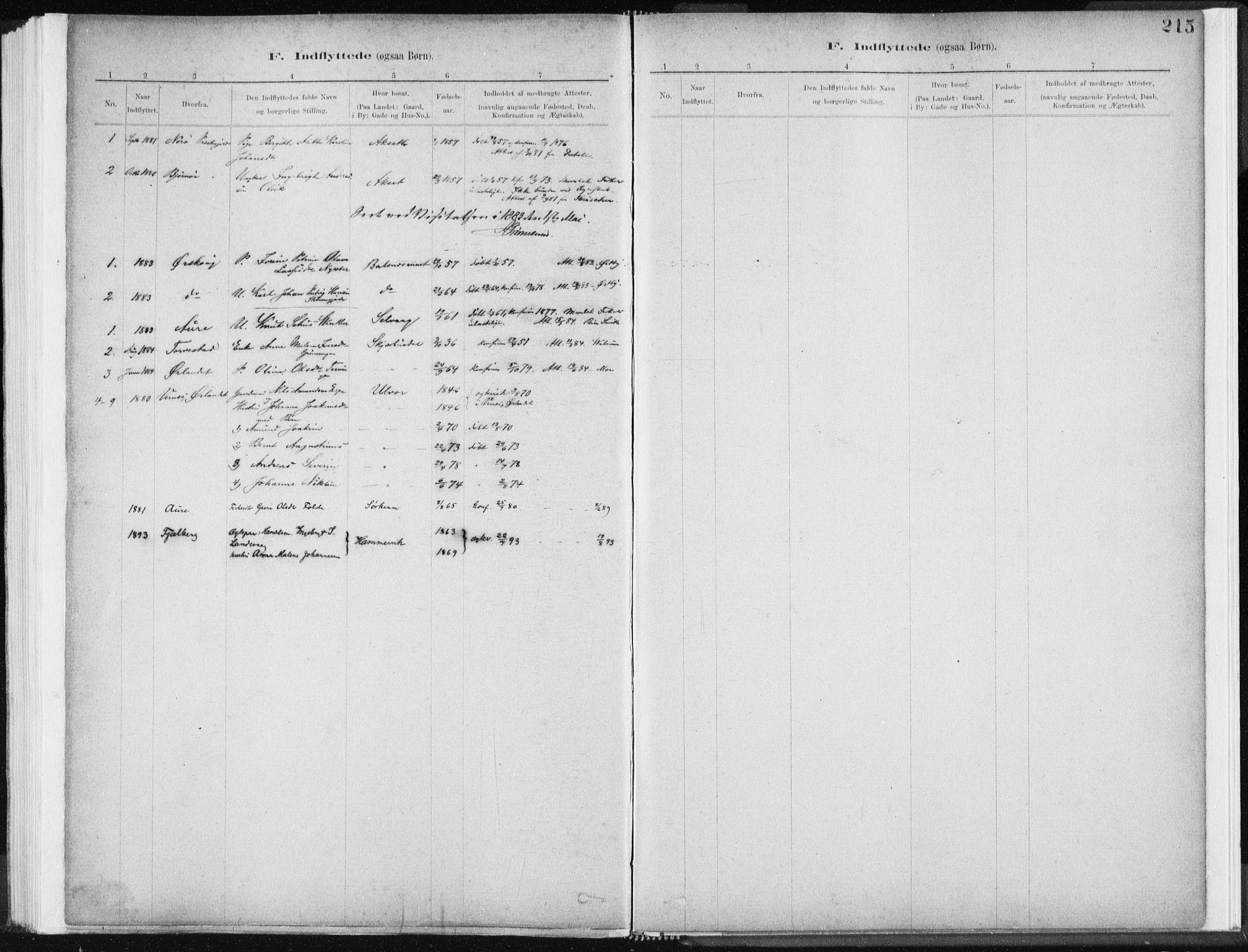 SAT, Ministerialprotokoller, klokkerbøker og fødselsregistre - Sør-Trøndelag, 637/L0558: Ministerialbok nr. 637A01, 1882-1899, s. 215