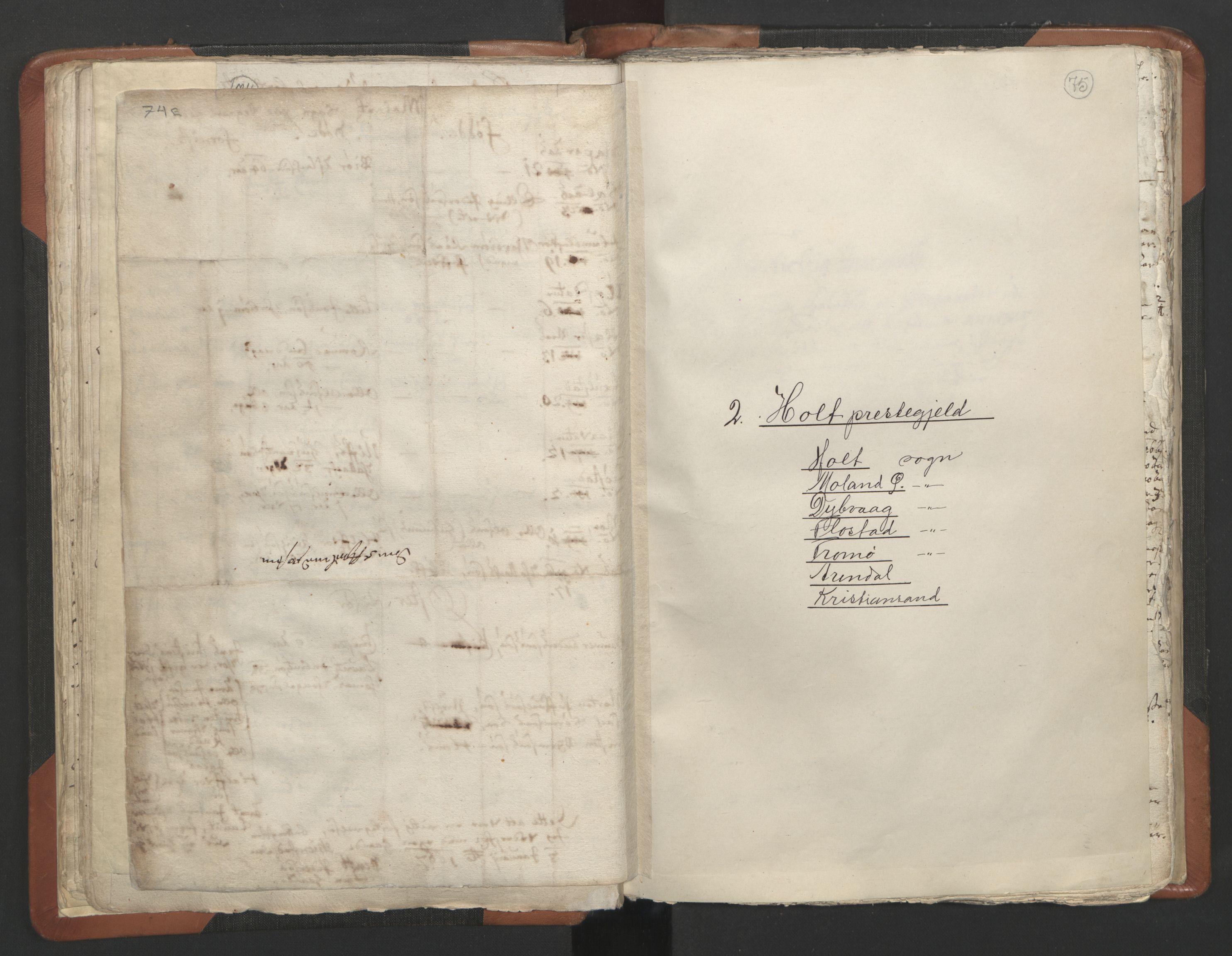 RA, Sogneprestenes manntall 1664-1666, nr. 13: Nedenes prosti, 1664-1666, s. 74-75