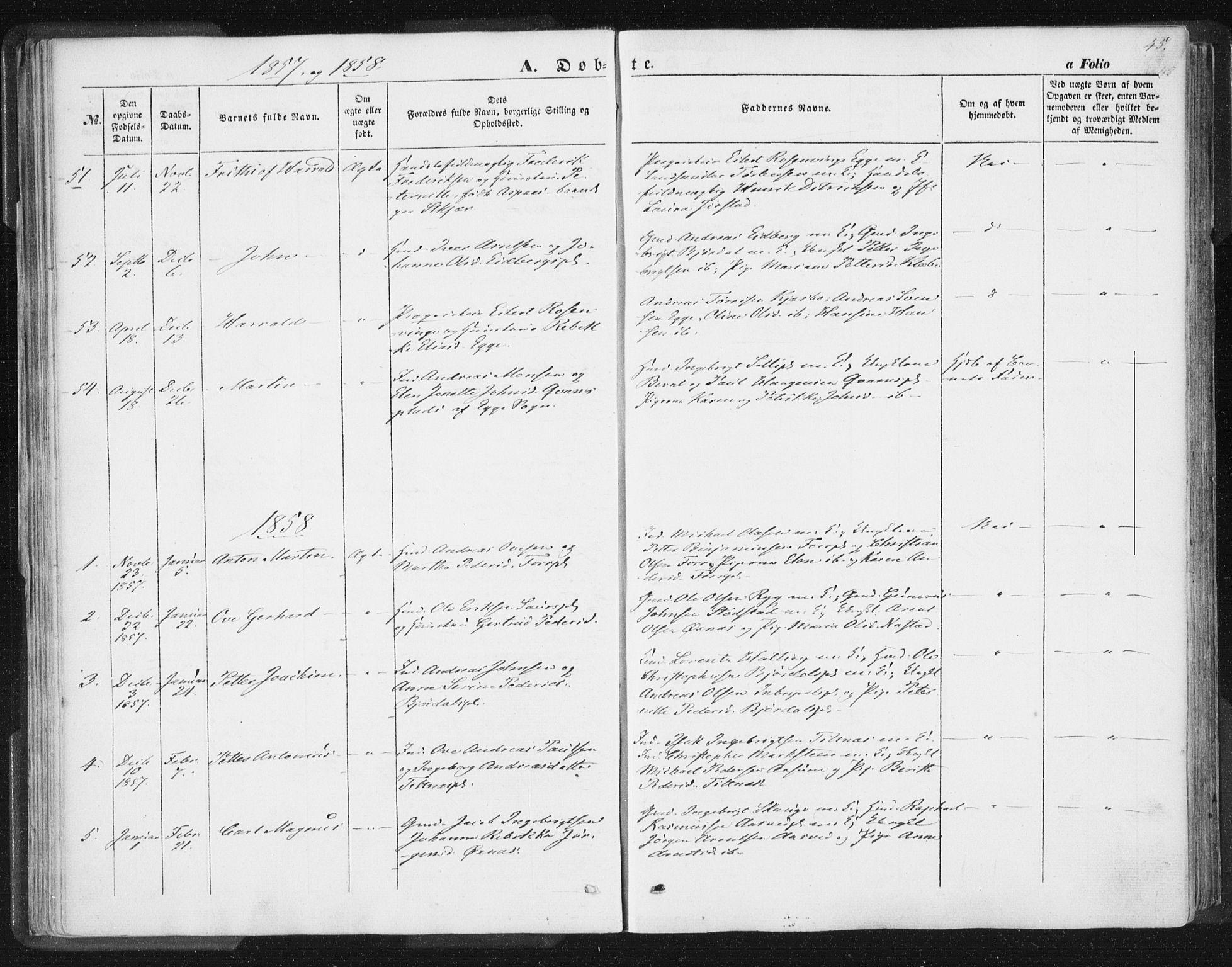 SAT, Ministerialprotokoller, klokkerbøker og fødselsregistre - Nord-Trøndelag, 746/L0446: Ministerialbok nr. 746A05, 1846-1859, s. 45