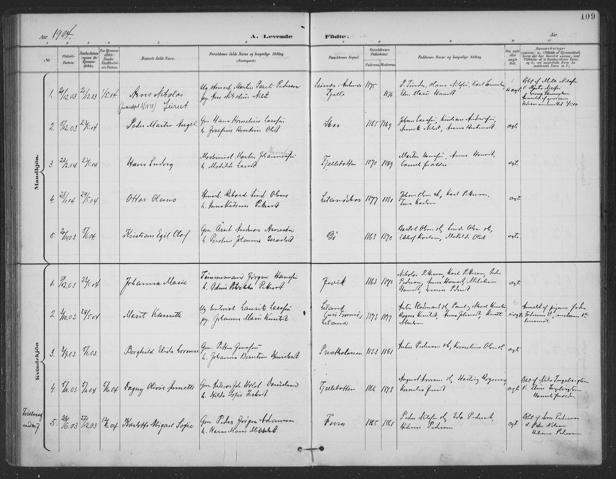 SAT, Ministerialprotokoller, klokkerbøker og fødselsregistre - Nordland, 863/L0899: Ministerialbok nr. 863A11, 1897-1906, s. 109