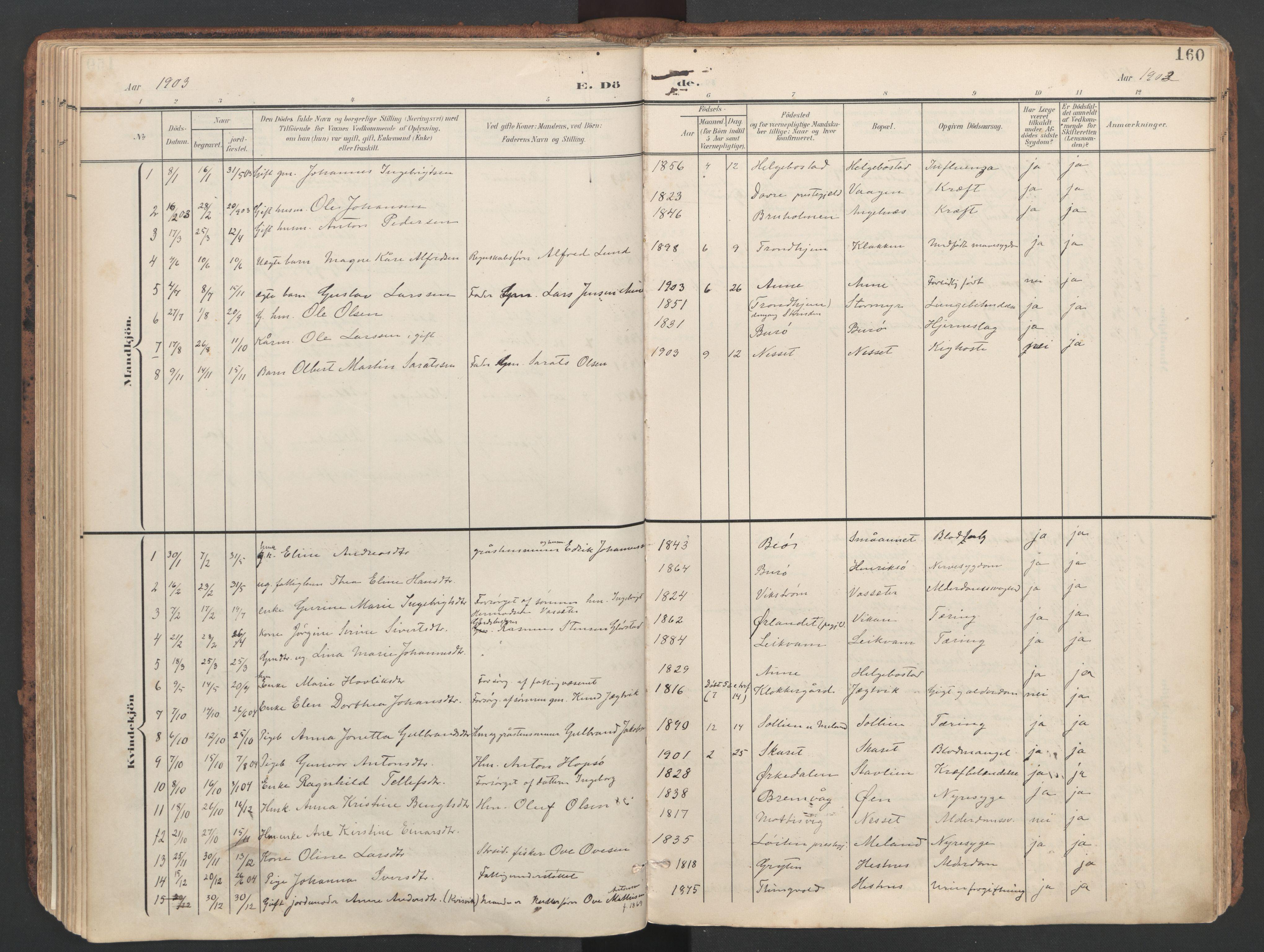 SAT, Ministerialprotokoller, klokkerbøker og fødselsregistre - Sør-Trøndelag, 634/L0537: Ministerialbok nr. 634A13, 1896-1922, s. 160