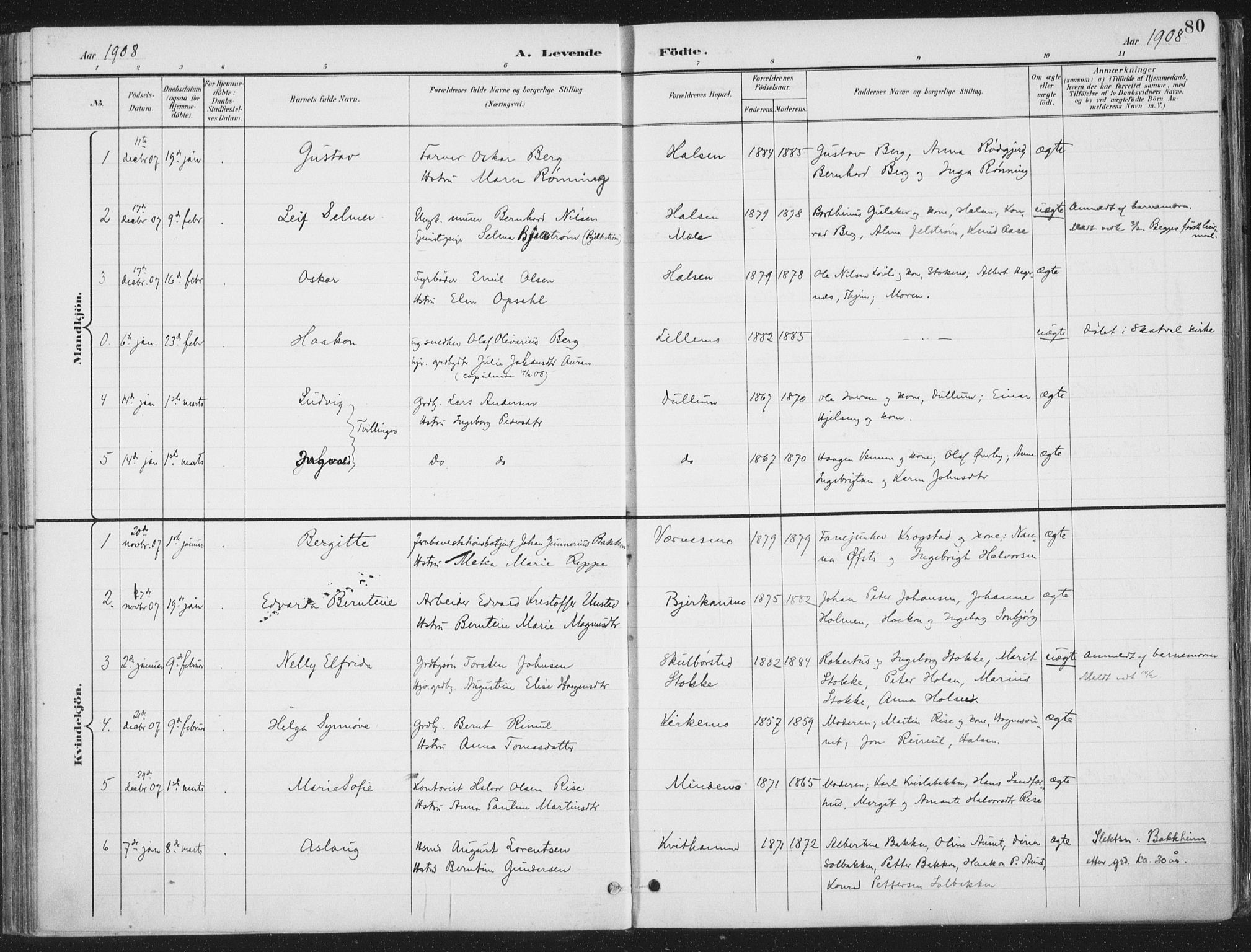 SAT, Ministerialprotokoller, klokkerbøker og fødselsregistre - Nord-Trøndelag, 709/L0082: Ministerialbok nr. 709A22, 1896-1916, s. 80