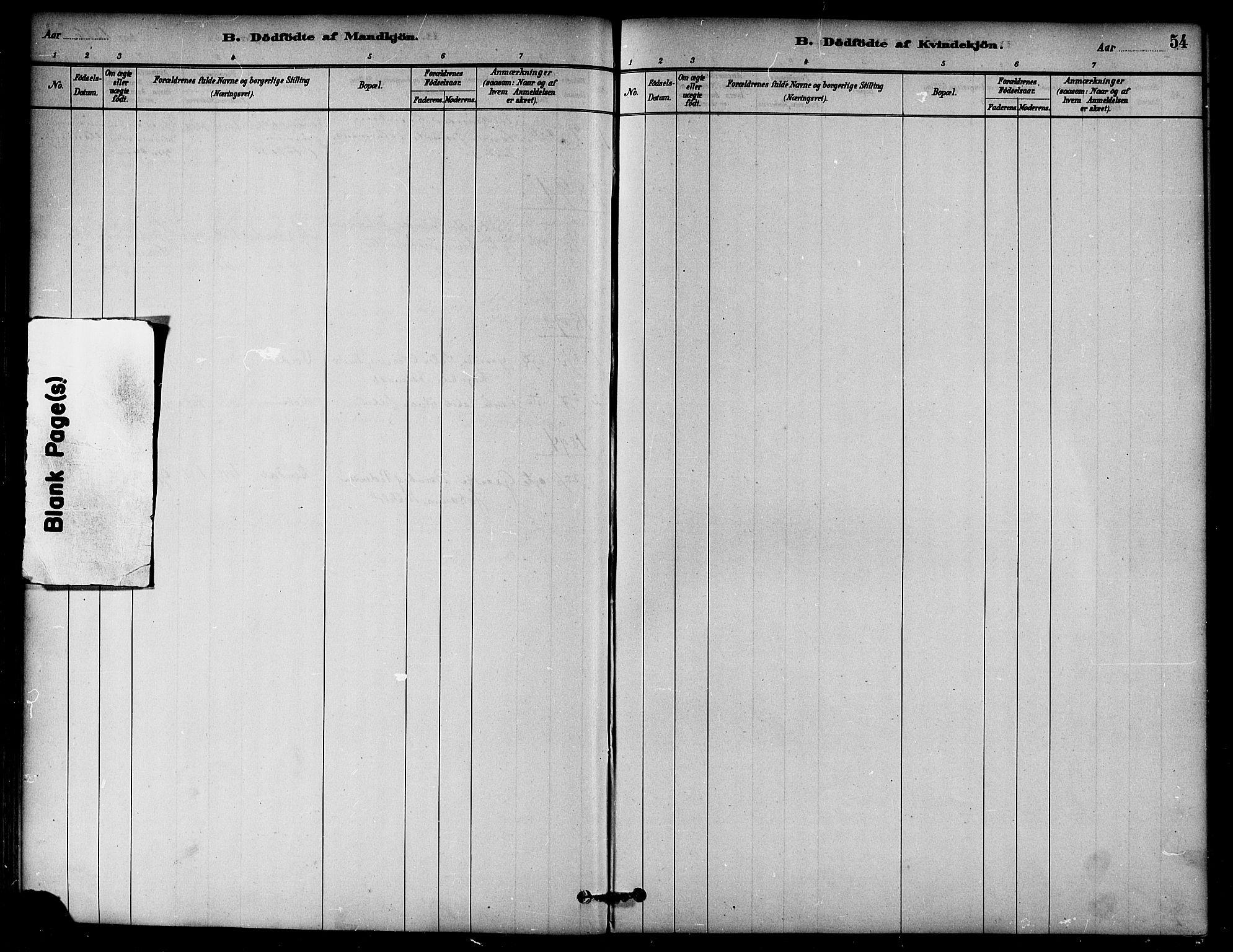 SAT, Ministerialprotokoller, klokkerbøker og fødselsregistre - Nord-Trøndelag, 764/L0555: Ministerialbok nr. 764A10, 1881-1896, s. 54