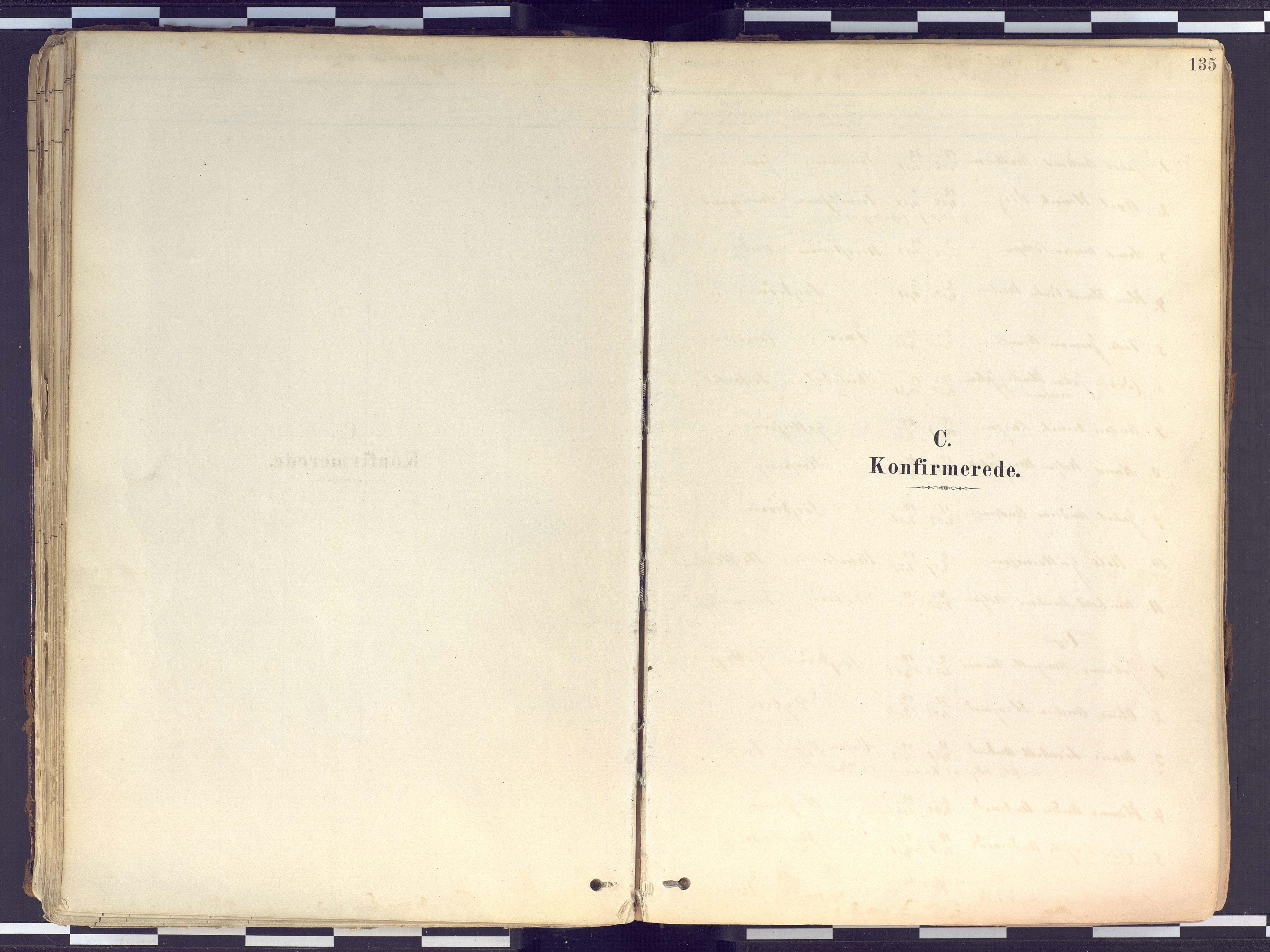SATØ, Tranøy sokneprestkontor, I/Ia/Iaa/L0010kirke: Ministerialbok nr. 10, 1878-1904, s. 135